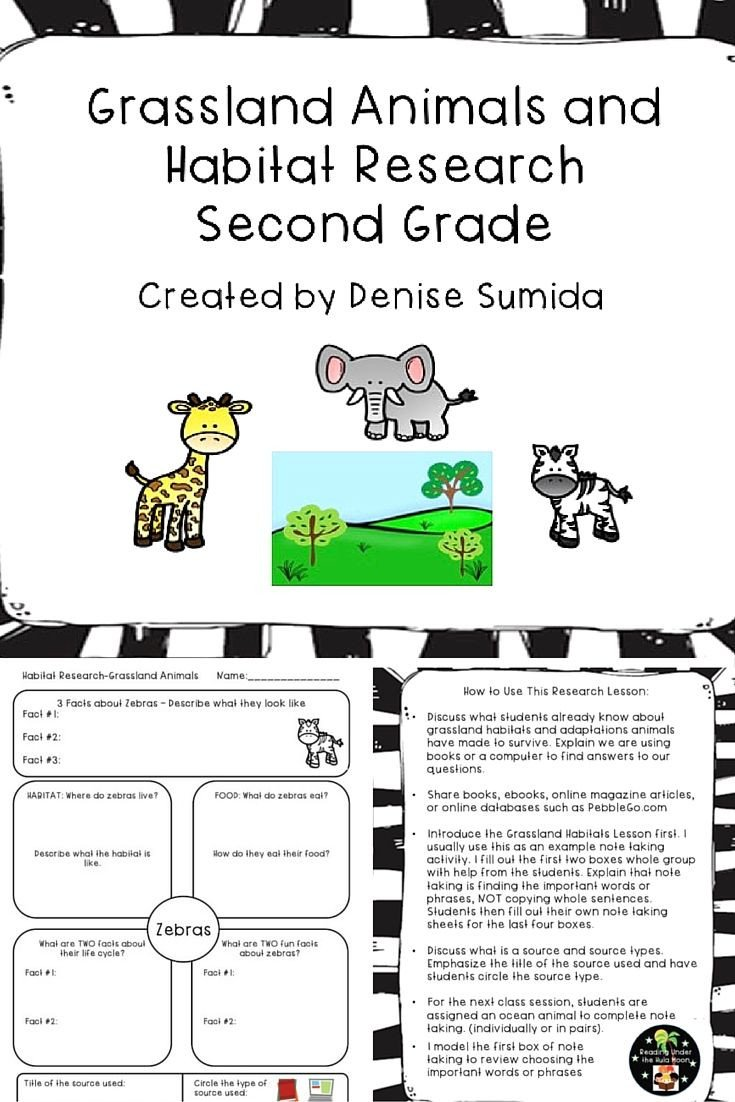 2nd Grade Habitat Worksheets Grassland Animals and Habitat Research Second Grade