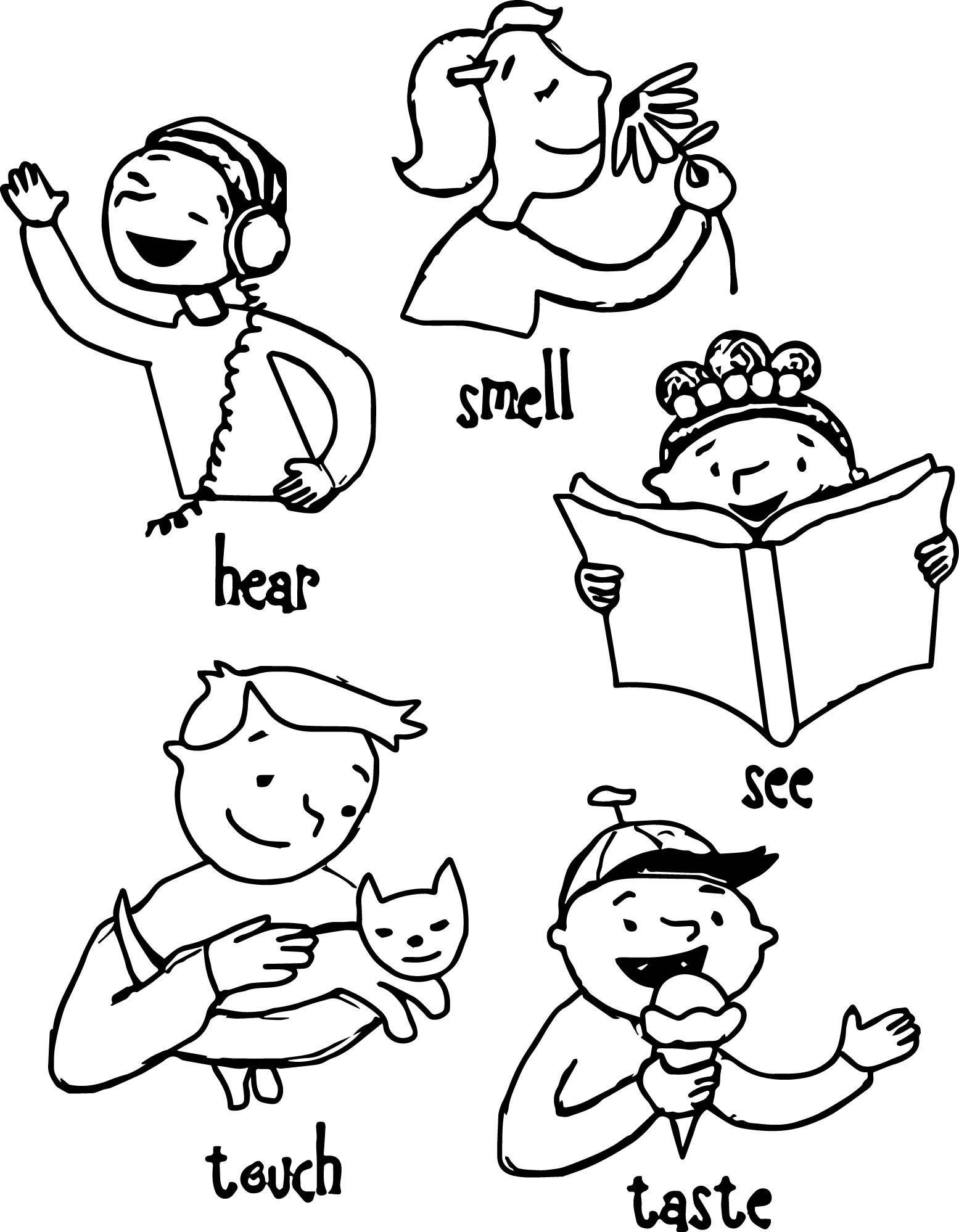 5 Senses Worksheet Preschool 5 Senses Worksheet See