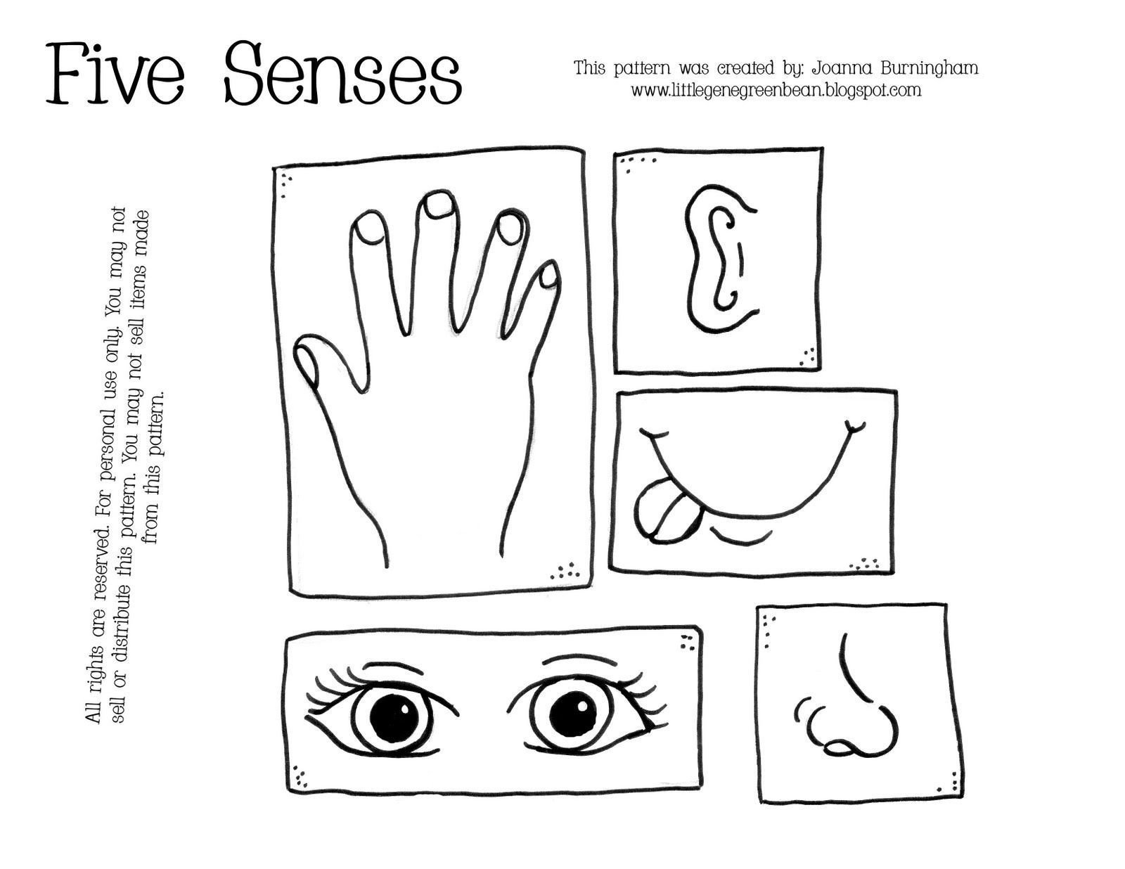 5 Senses Worksheet Preschool Pre K 5 Senses Worksheet
