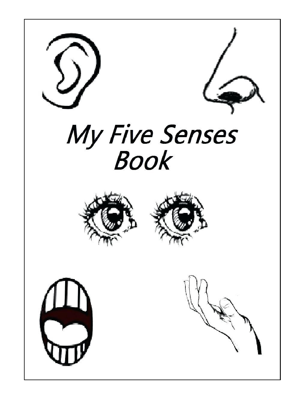 5 Senses Worksheets Kindergarten Five Senses Activities for Kindergarten Best Sciencesheet