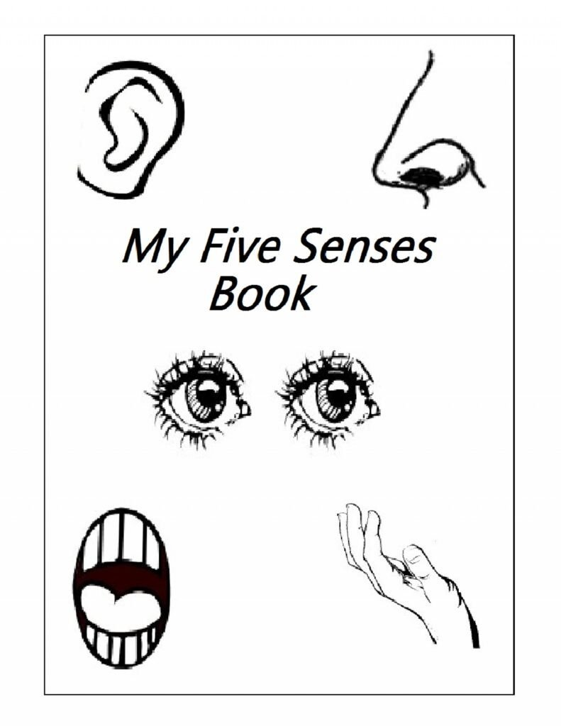 5 Senses Worksheets Preschool Preschool Printables Five Senses Clover Hatunisi