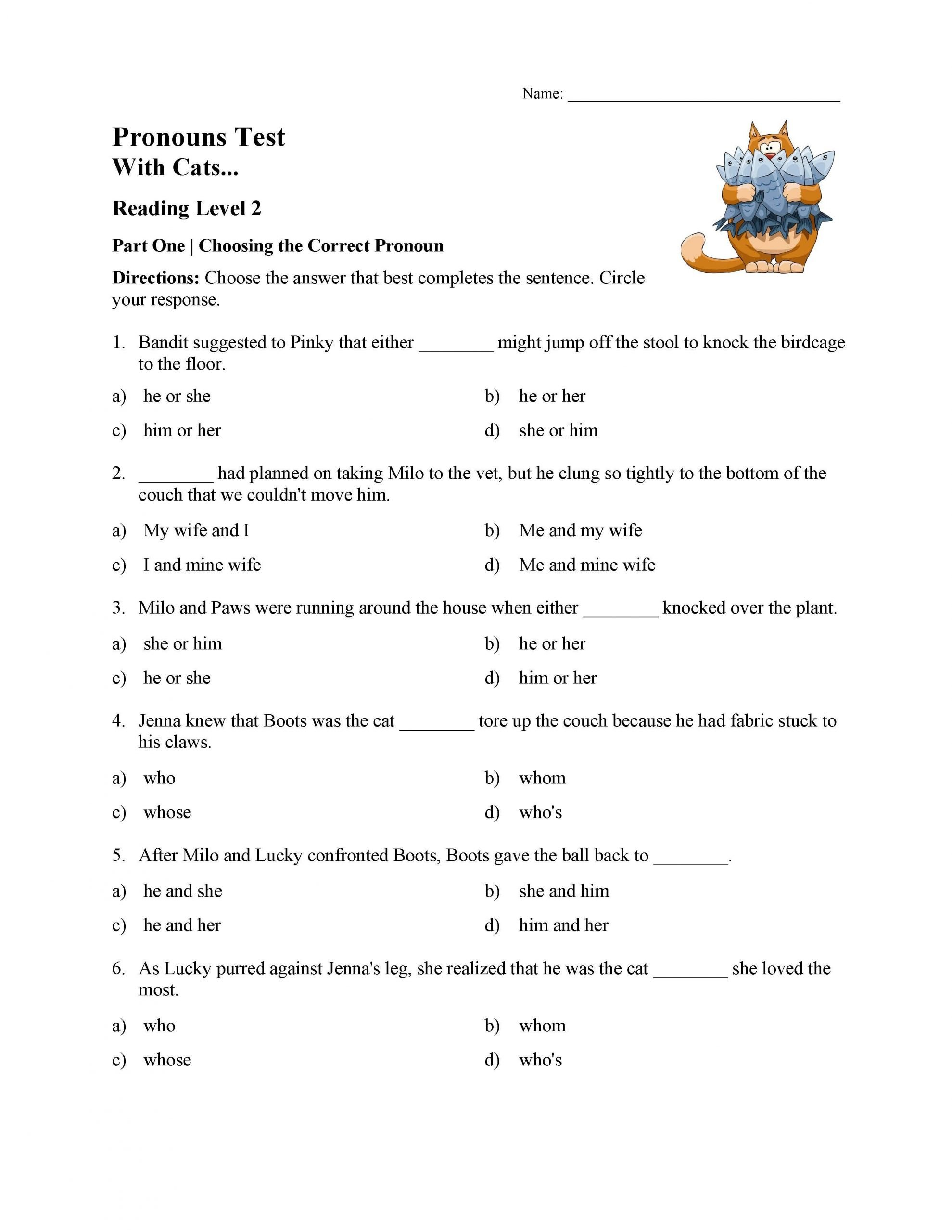 6th Grade Pronoun Worksheets Pronouns Test with Cats Reading Level 2