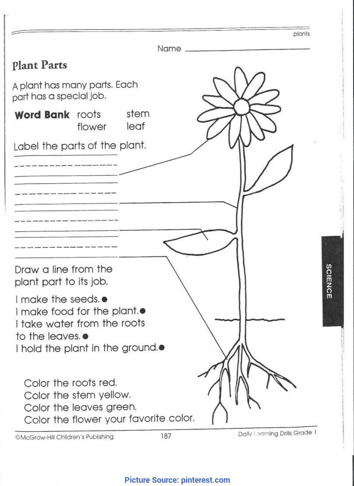 7th Grade Science Worksheets Pdf Best Third Grade Science Activities 1st Grade Science