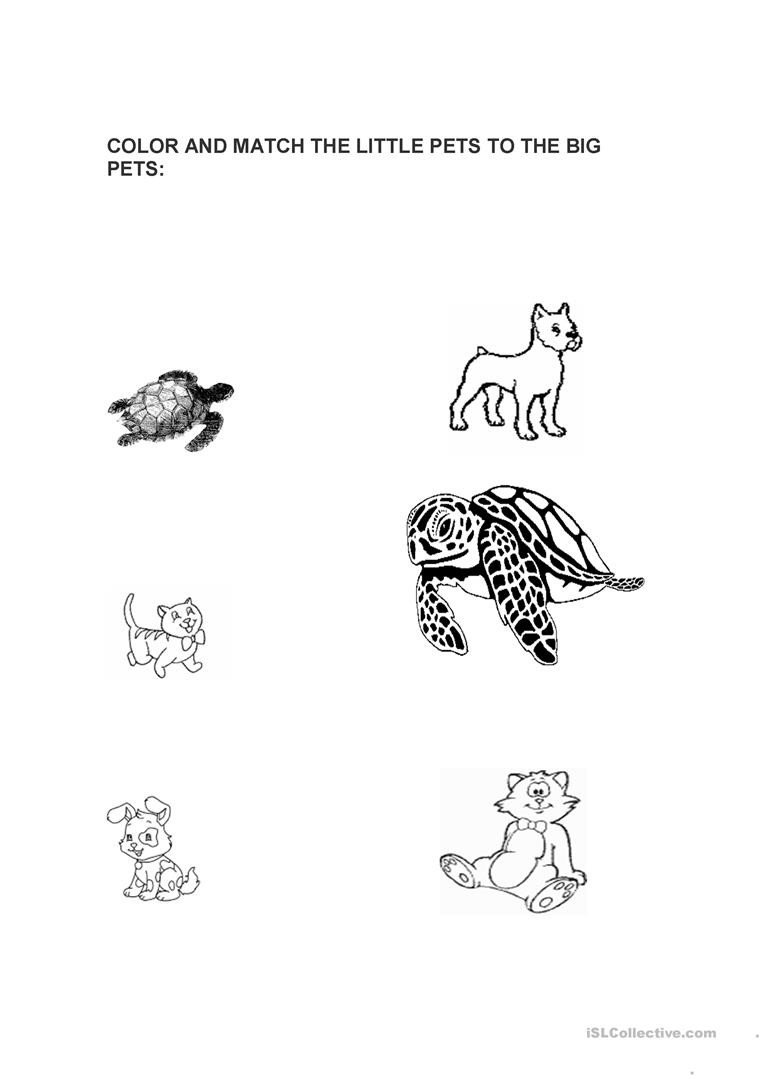 Big Vs Little Worksheets Big and Little Pets English Esl Worksheets for Distance
