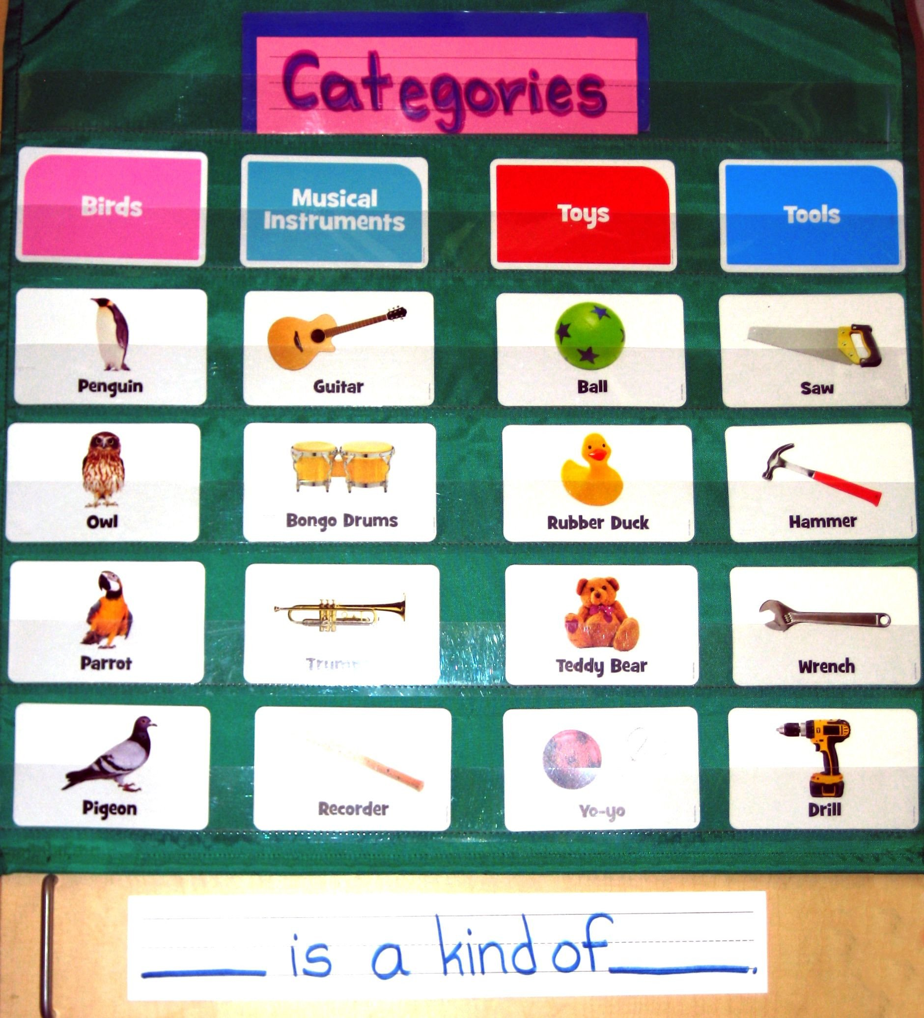 Classifying and categorizing are first grade standards
