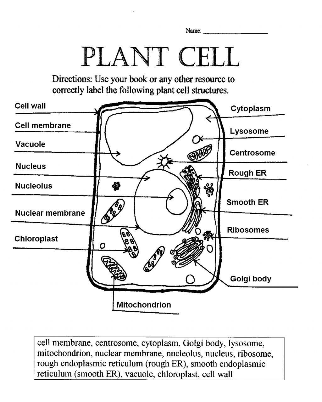 Cell Coloring Worksheets Coloring Animal Cell Coloring Sheet Coloring Pages New 77