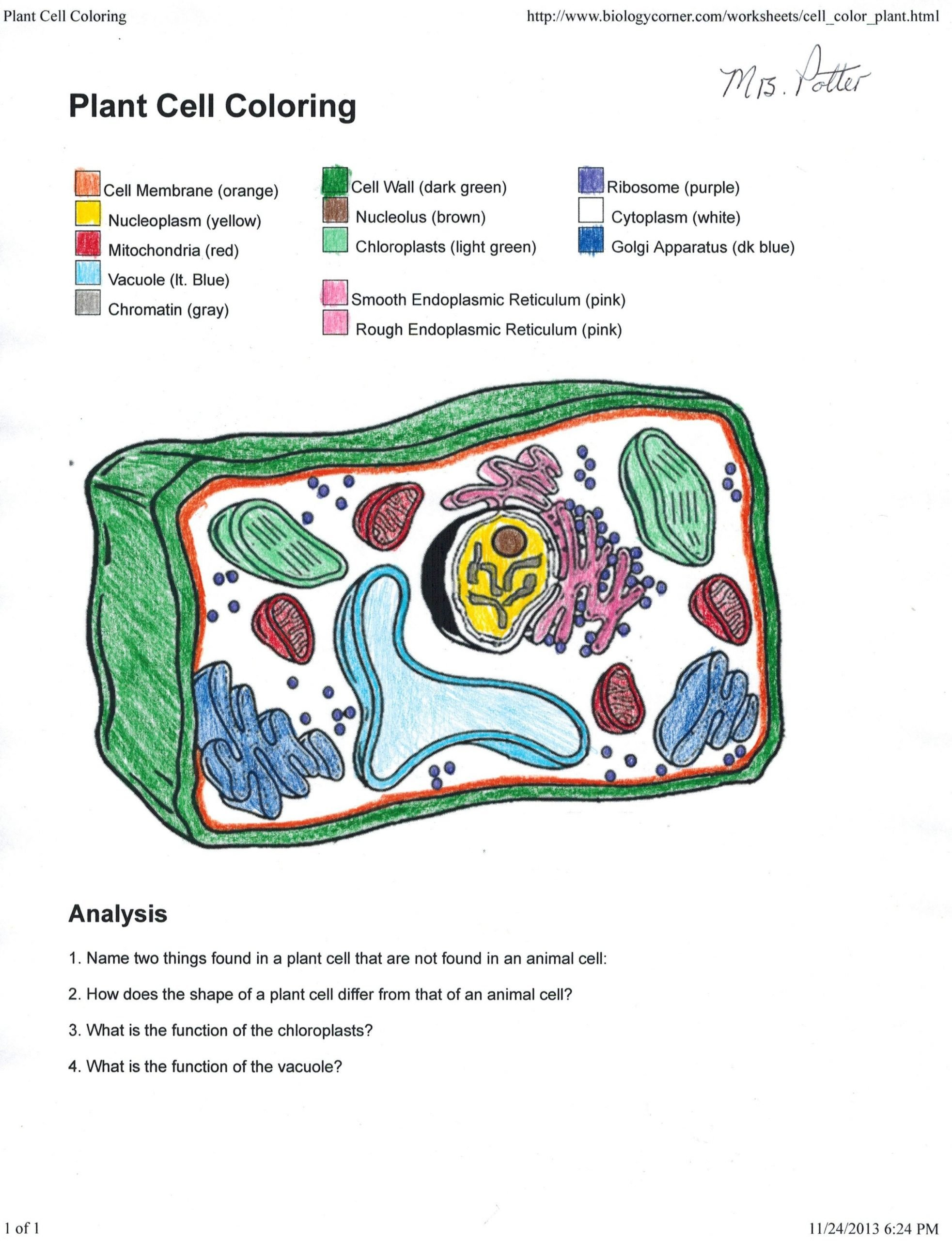 Cell Coloring Worksheets Trends for Plant Cell Coloring Answer Sheet