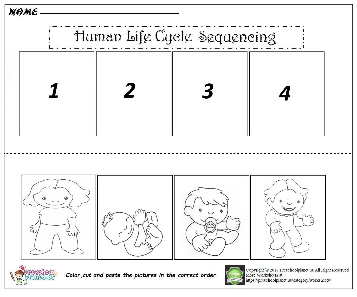Cut and Paste Sequencing Worksheets Human Life Cycle Sequencing Worksheet – Preschoolplanet