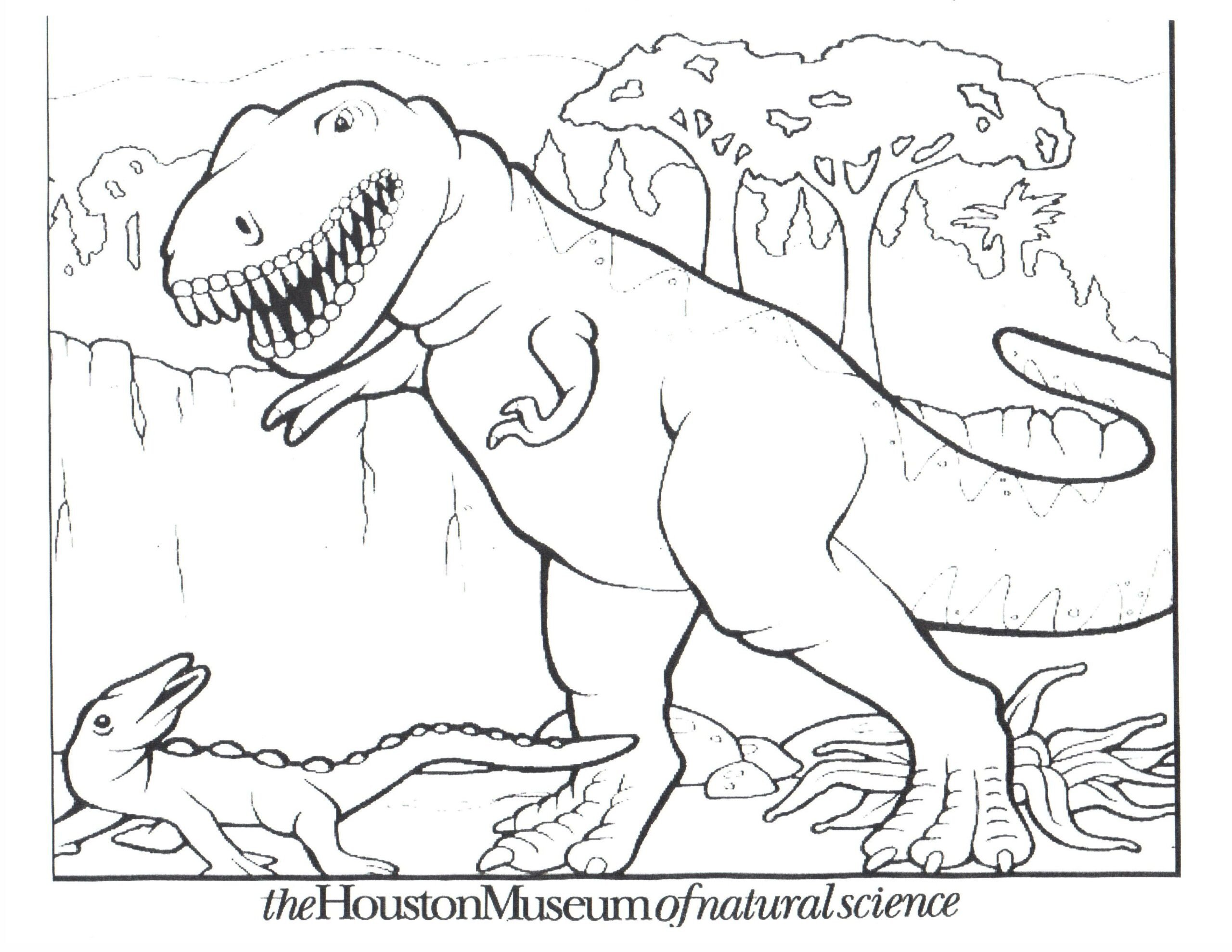 Dinosaur Worksheets for Preschoolers Free Printable Dinosaur Coloring for Kids Dinosaurs Color