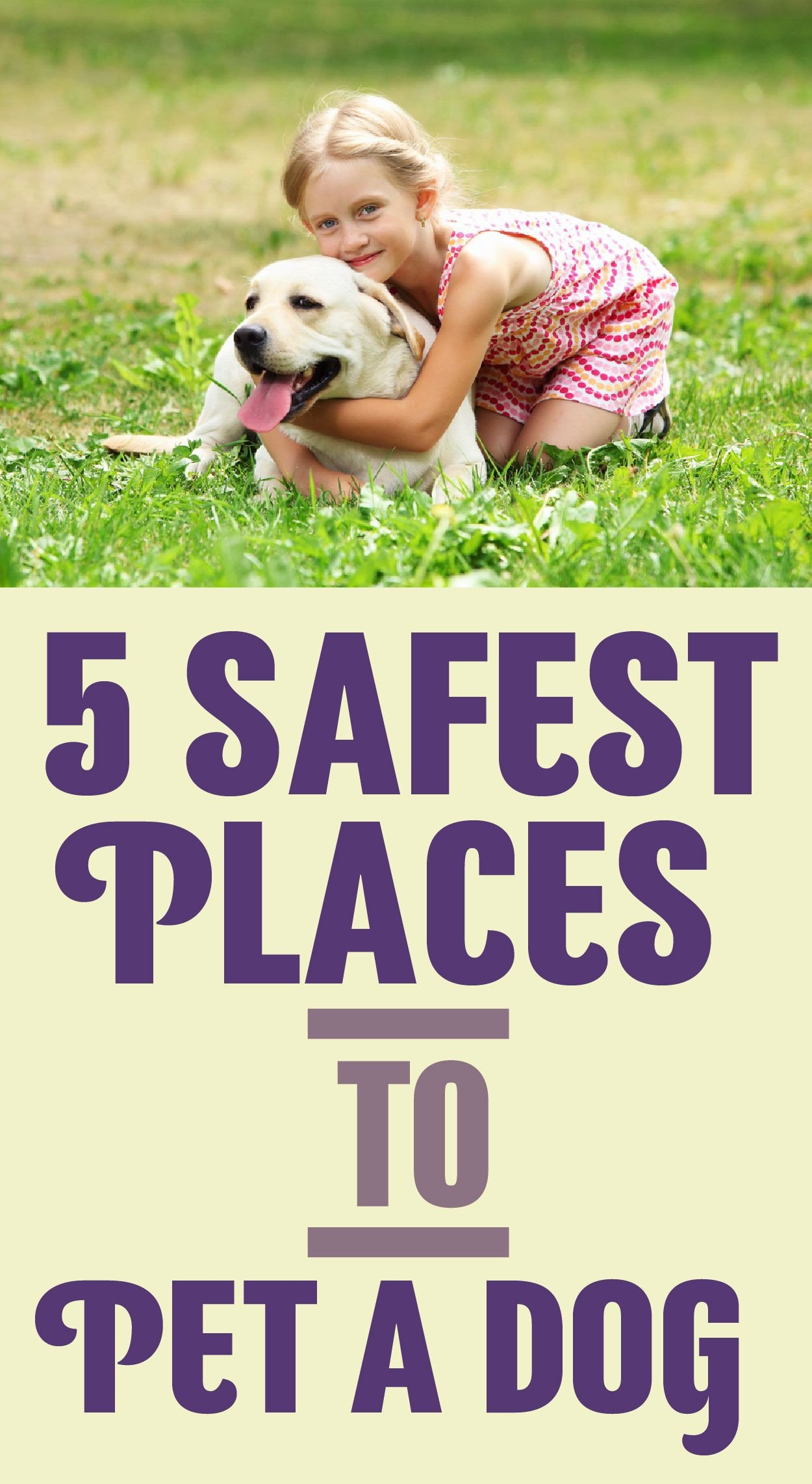 Dogs Decoded Worksheet 5 Safest Places to Pet A Dog