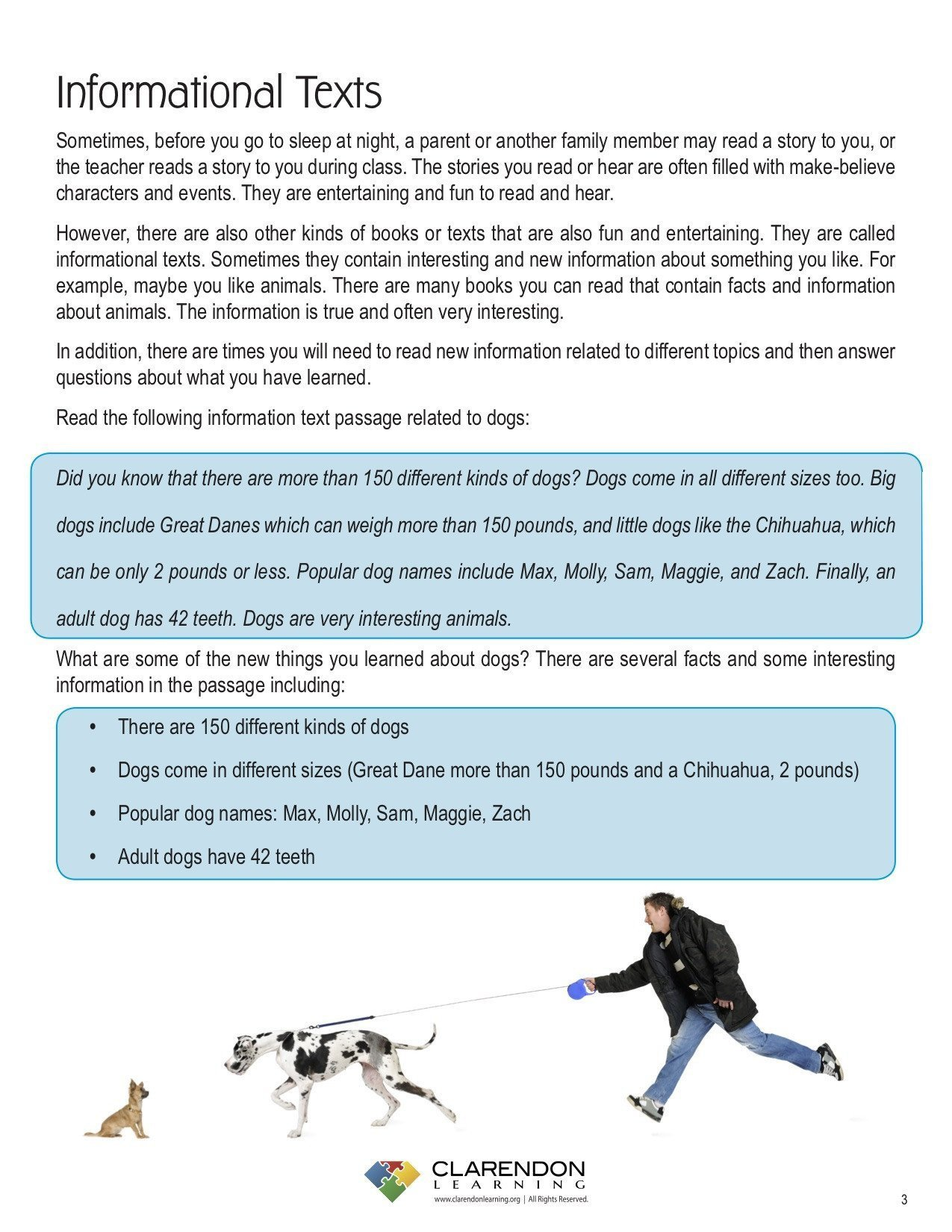 Dogs Decoded Worksheet Spatial Terms Worksheet
