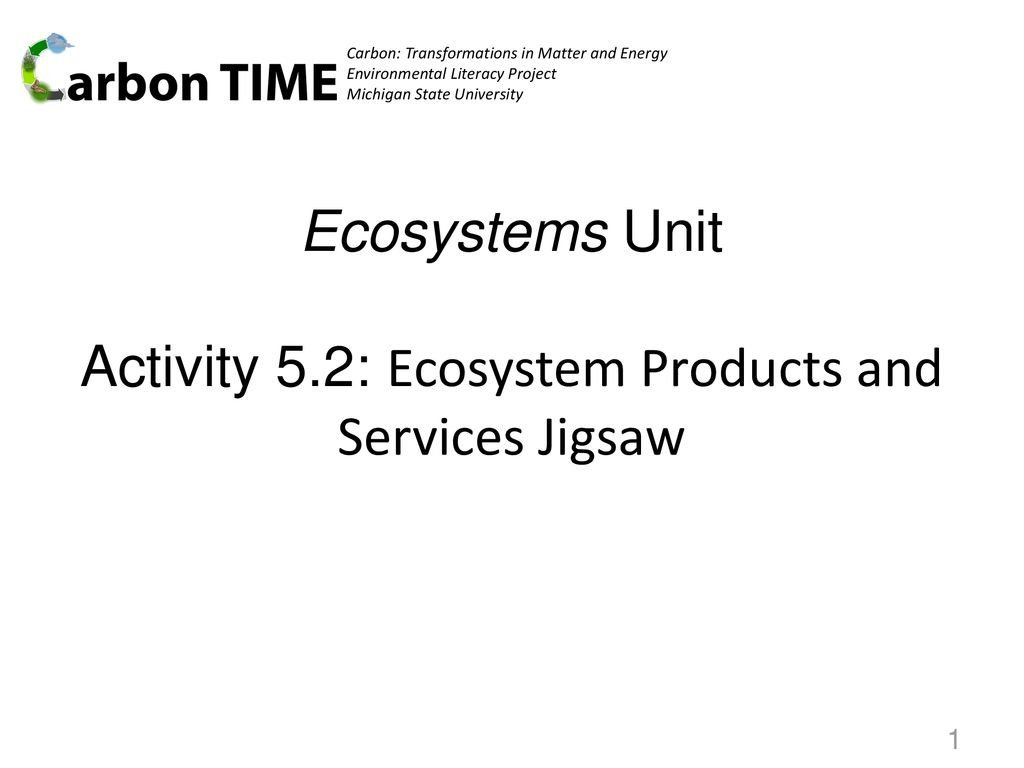 Ecosystem Worksheet Answer Key Ecosystems Unit Activity 5 2 Ecosystem Products and