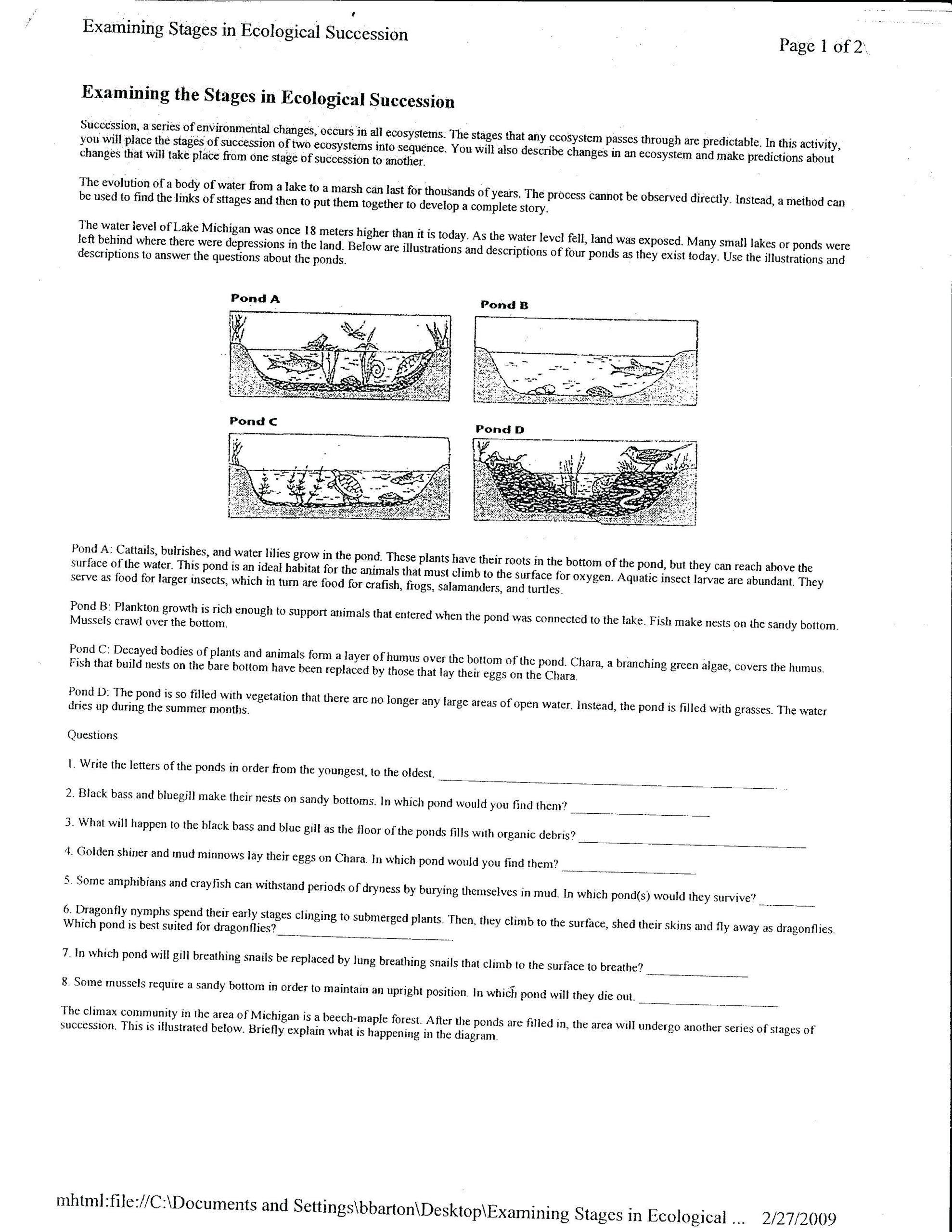 Ecosystem Worksheet Answer Key Stages Ecological Succession Worksheet