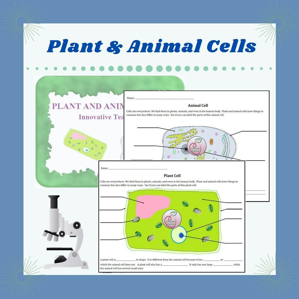 Elementary Cell Worksheets Plant and Animal Cell Worksheet Distance Learning In 2020