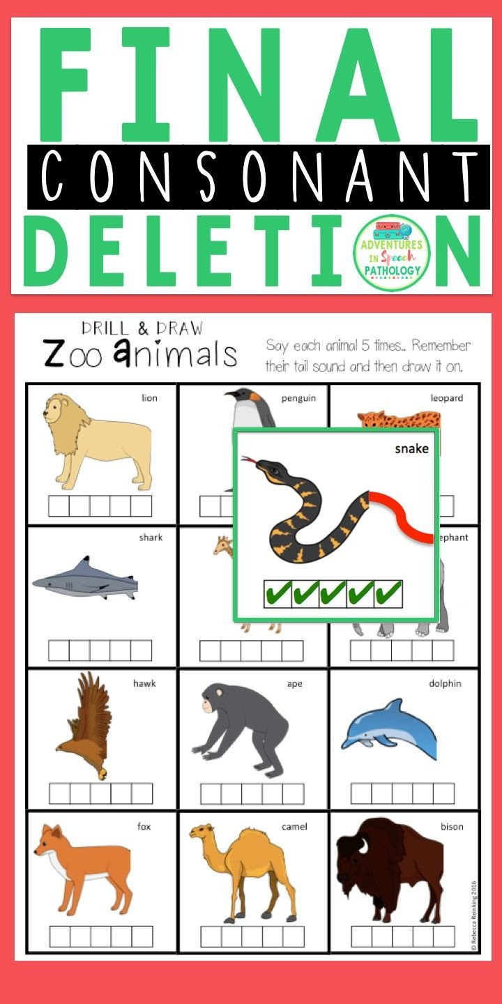 Final Consonant Deletion Worksheet Final Consonant Deletion Tail sound Packet