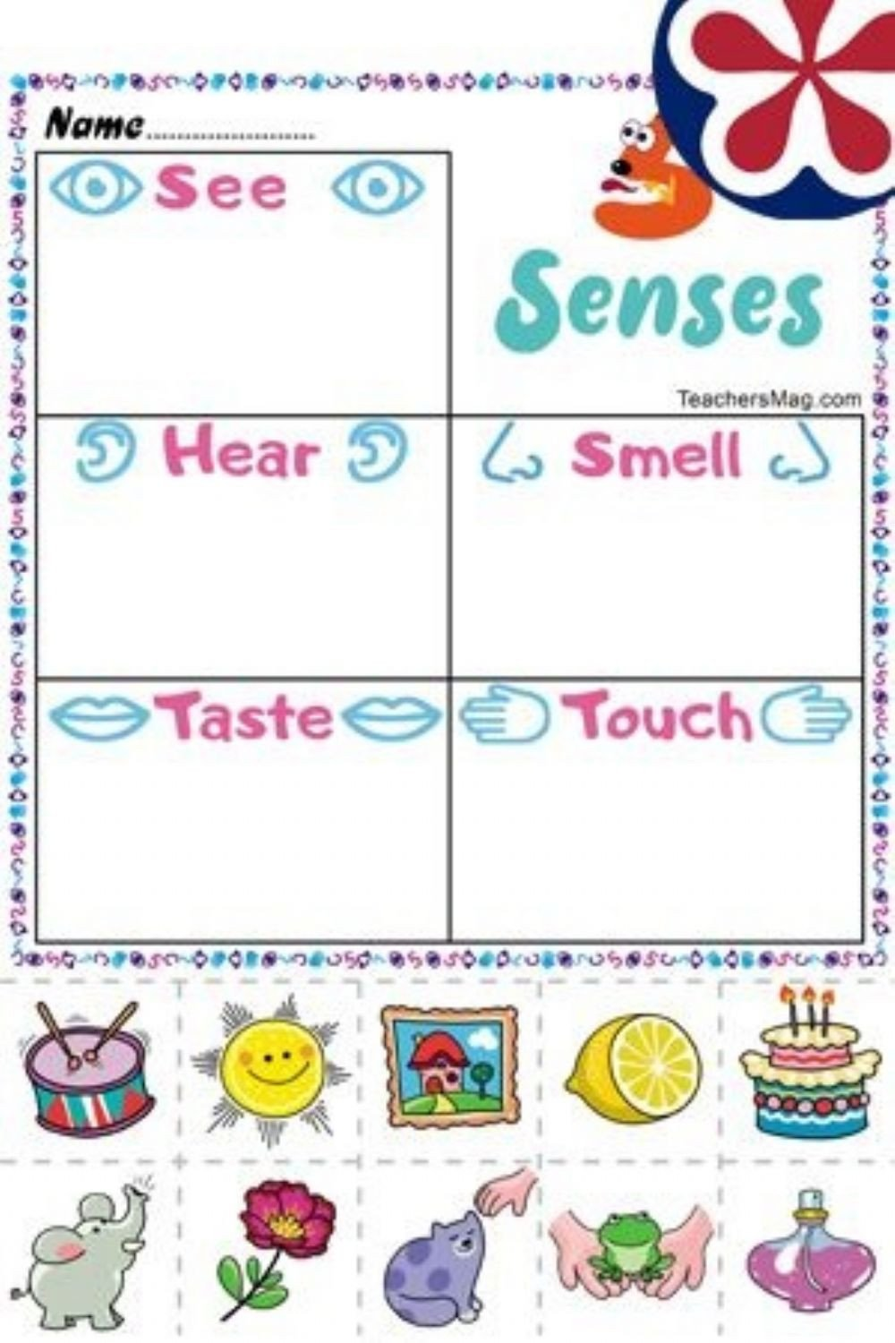 Five Senses Worksheets Pdf Five Senses Online Worksheet and Pdf