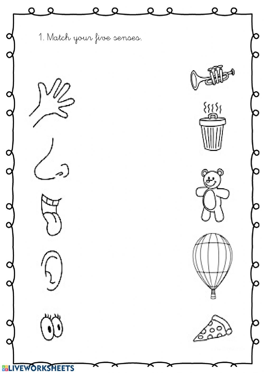 Five Senses Worksheets Pdf My 5 Senses Interactive Worksheet