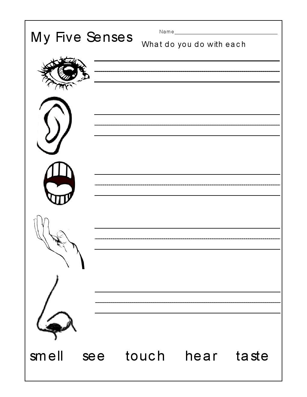 Five Senses Worksheets Pdf Worksheet Free Handwriting Worksheets Worksheetaker Second