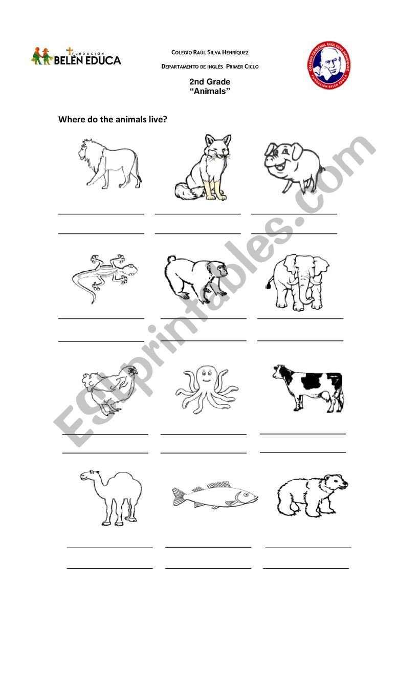 Free Habitat Worksheets Animals Habitat Esl Worksheet by Lilycaro