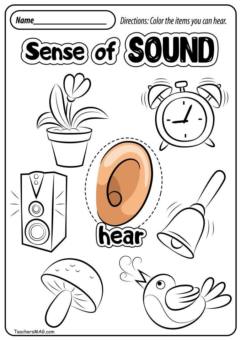 Free Printable Five Senses Worksheets Free Five Senses Worksheets Teachersmag