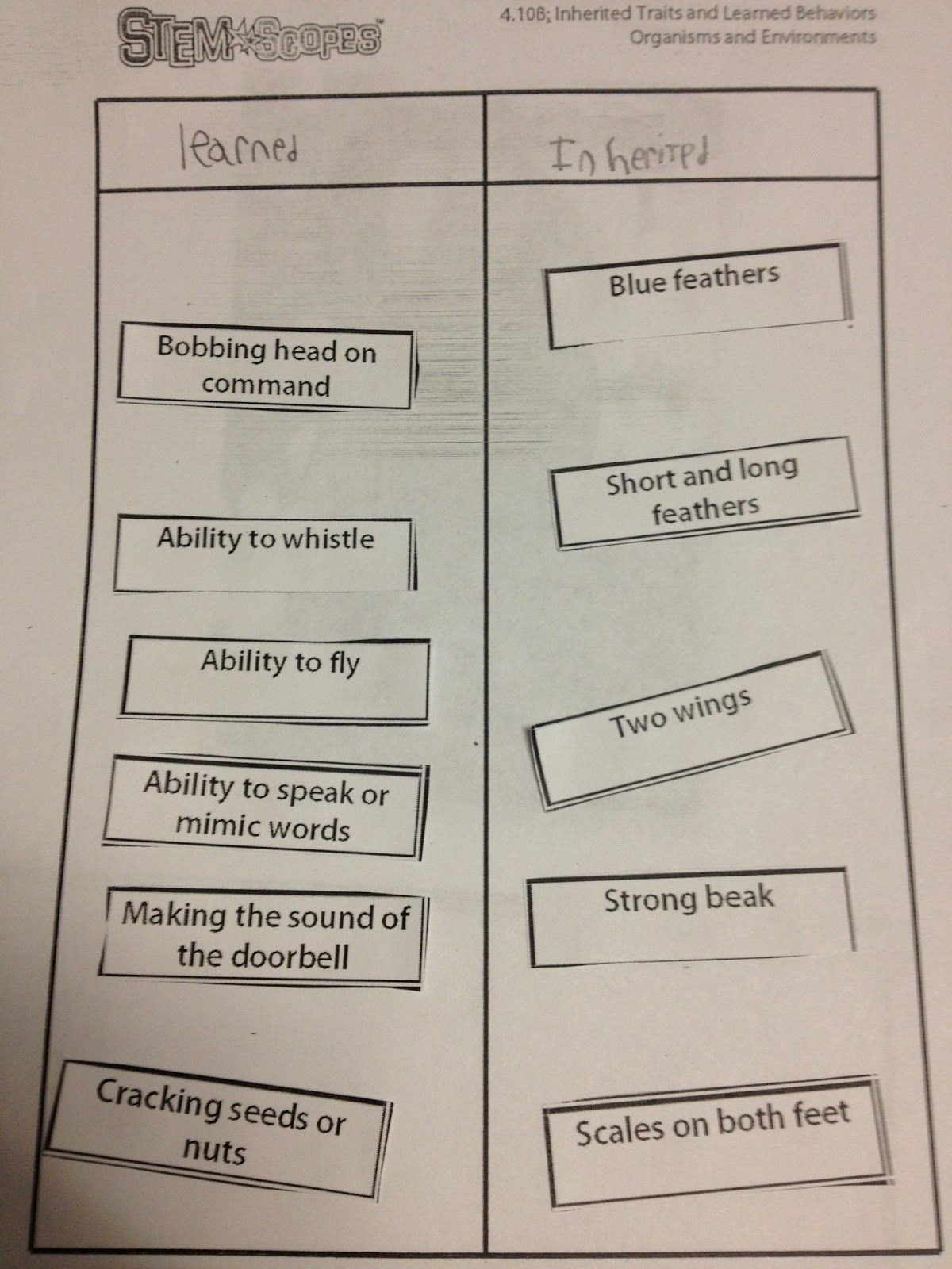 Inherited Traits Worksheet the 4th Grade May Niacs Inherited Traits and Learned