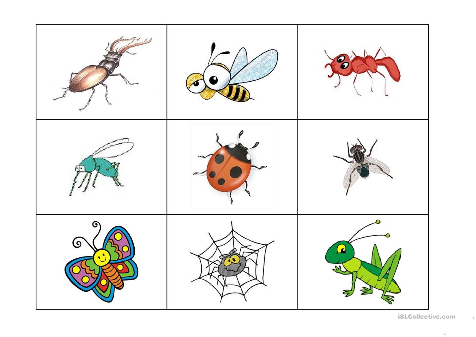 insects bingo game english esl worksheets for distance 1
