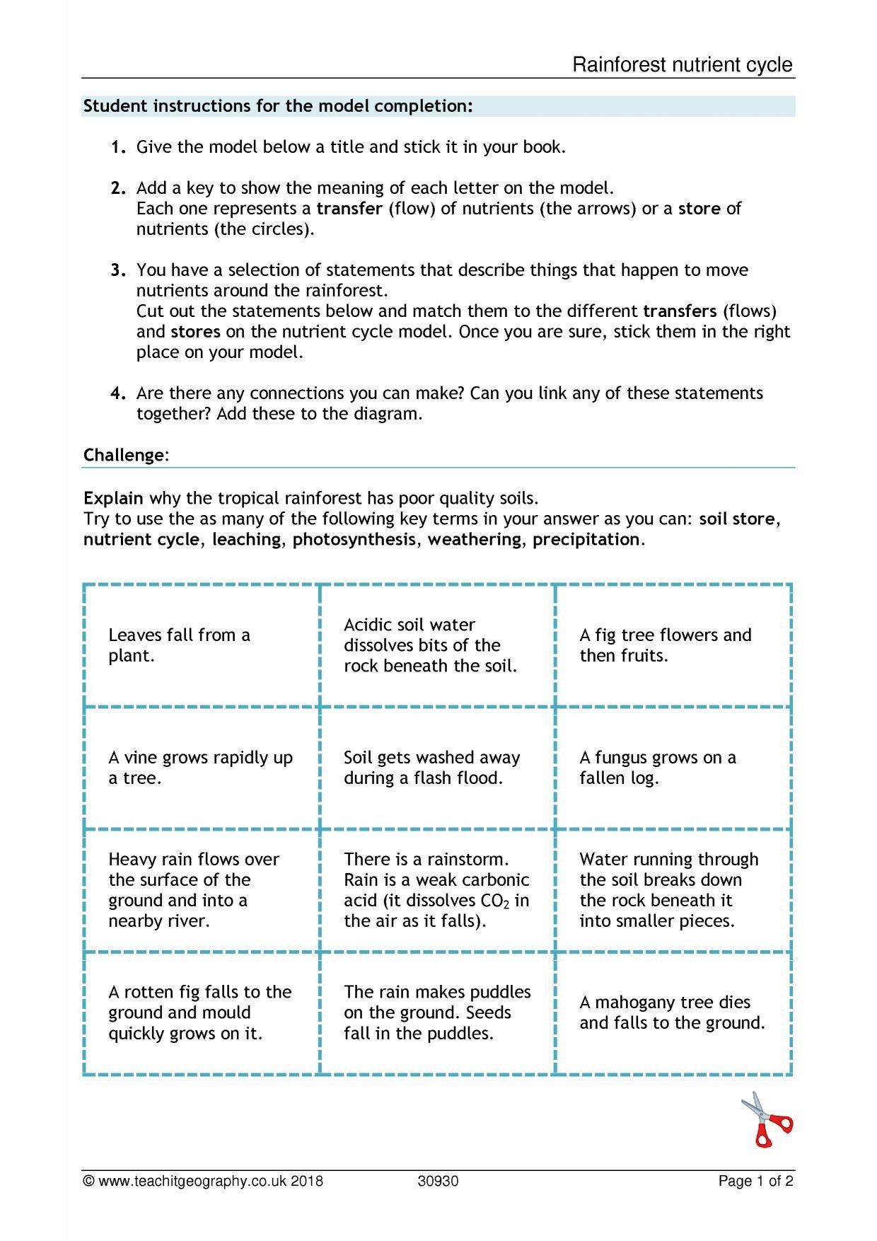 Integrated Science Cycles Worksheet Answers Nutrient Cycle Worksheet
