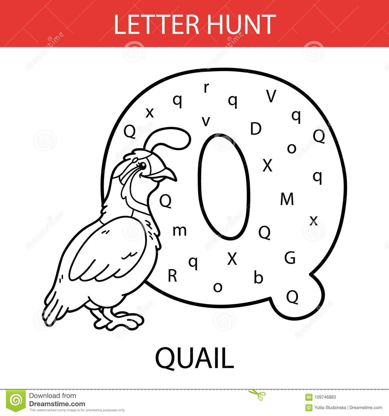 Letter Hunt Worksheet Animal Letter Hunt Quail Stock Vector Illustration Of Drawn