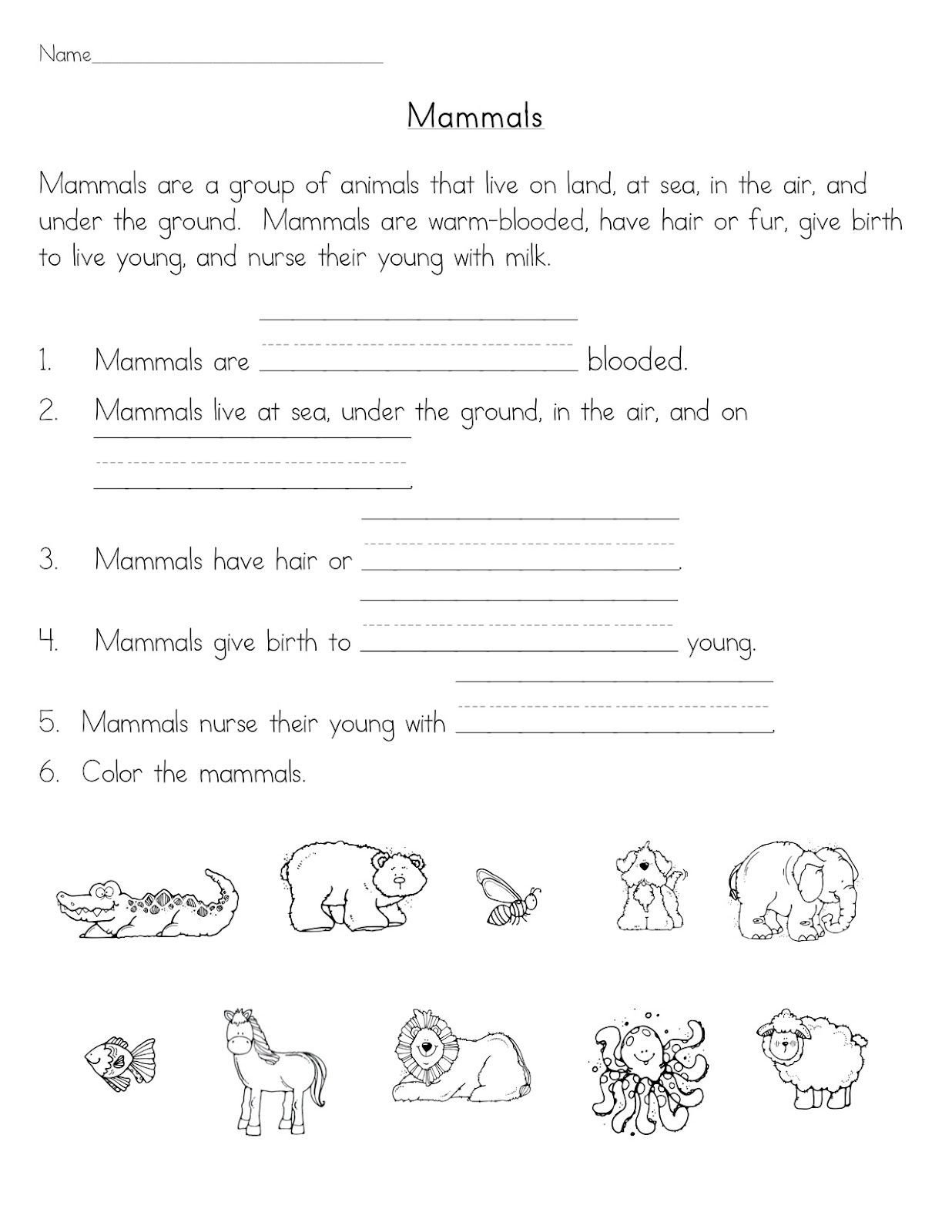Mammals Worksheet First Grade Mammals Classroom Freebies