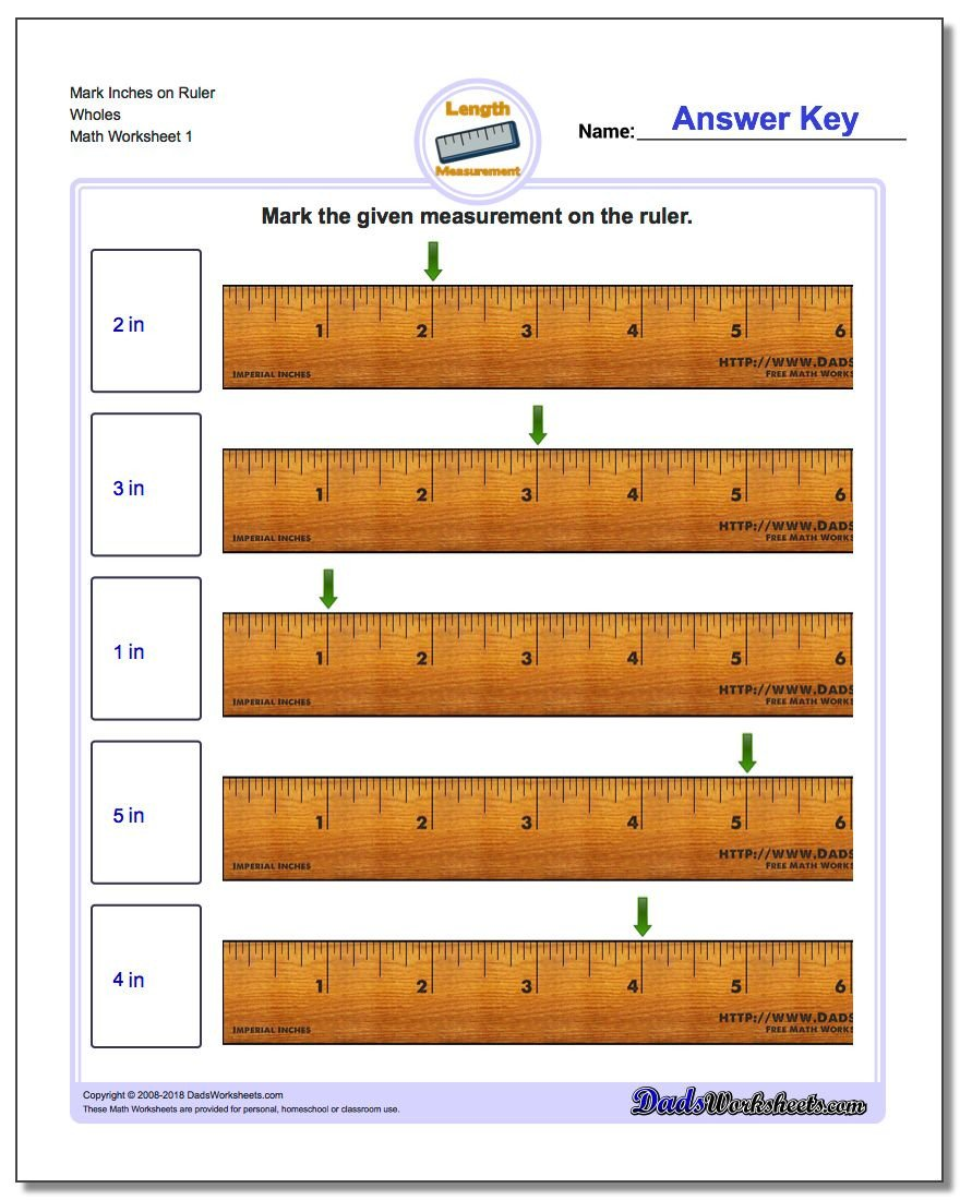 show point on inch ruler whole v1