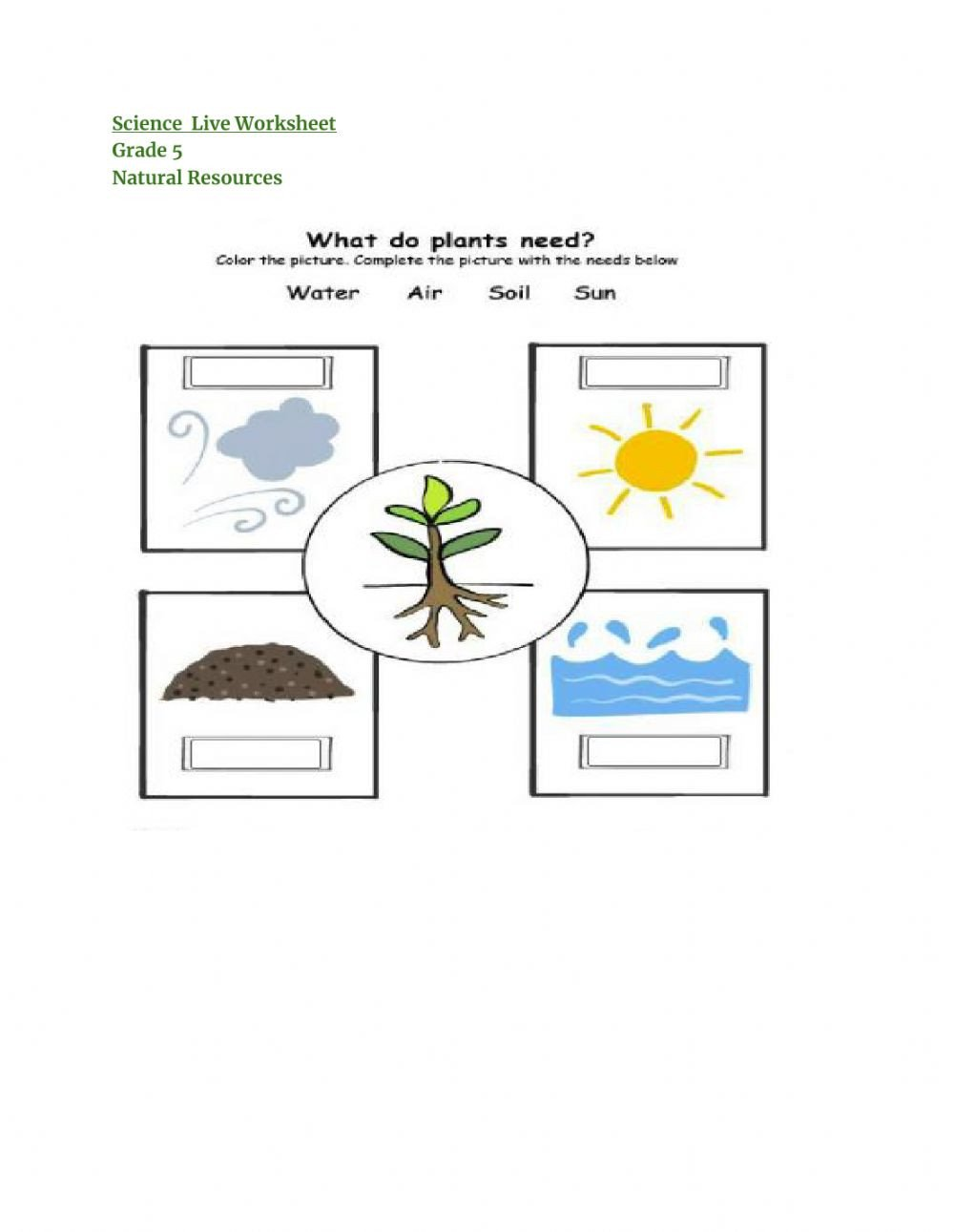 Natural Resources Worksheets Pdf Natural Resources Interactive Worksheet