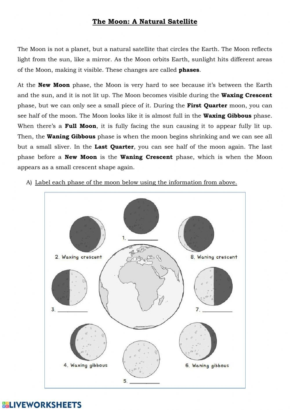 Phases Of the Moon Worksheet the Moon Phases and Eclipse Interactive Worksheet