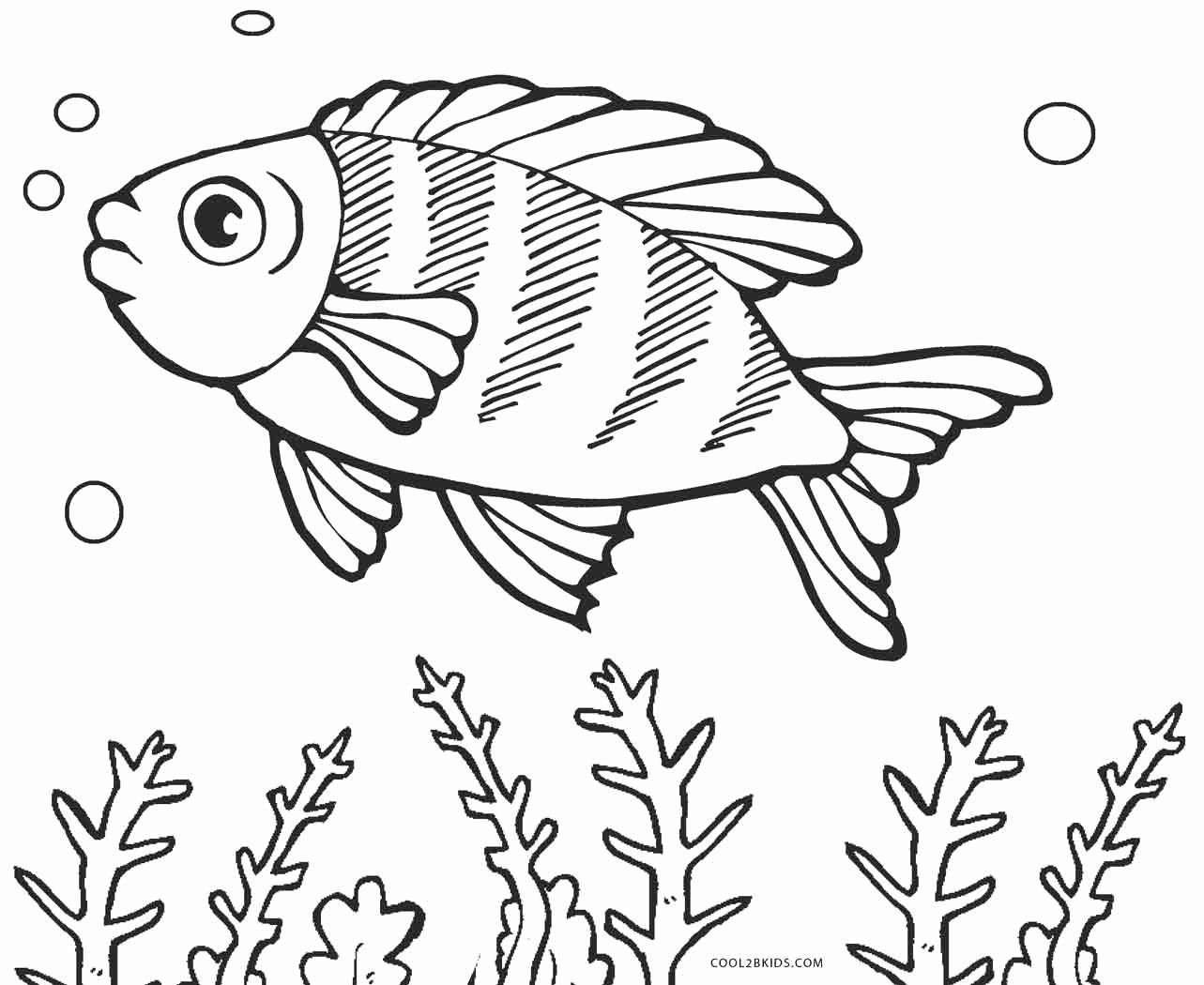 Rainbow Fish Printable Worksheets Coloring Page Fish Beautiful Free Printable Fish Coloring