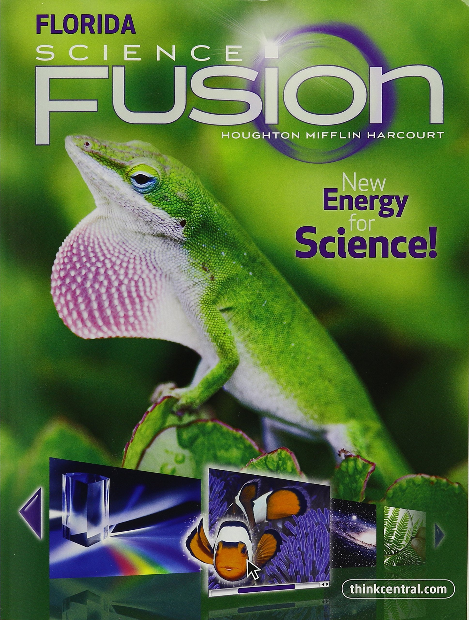 Science Fusion Grade 3 Worksheets Houghton Mifflin Harcourt Science Student Edition