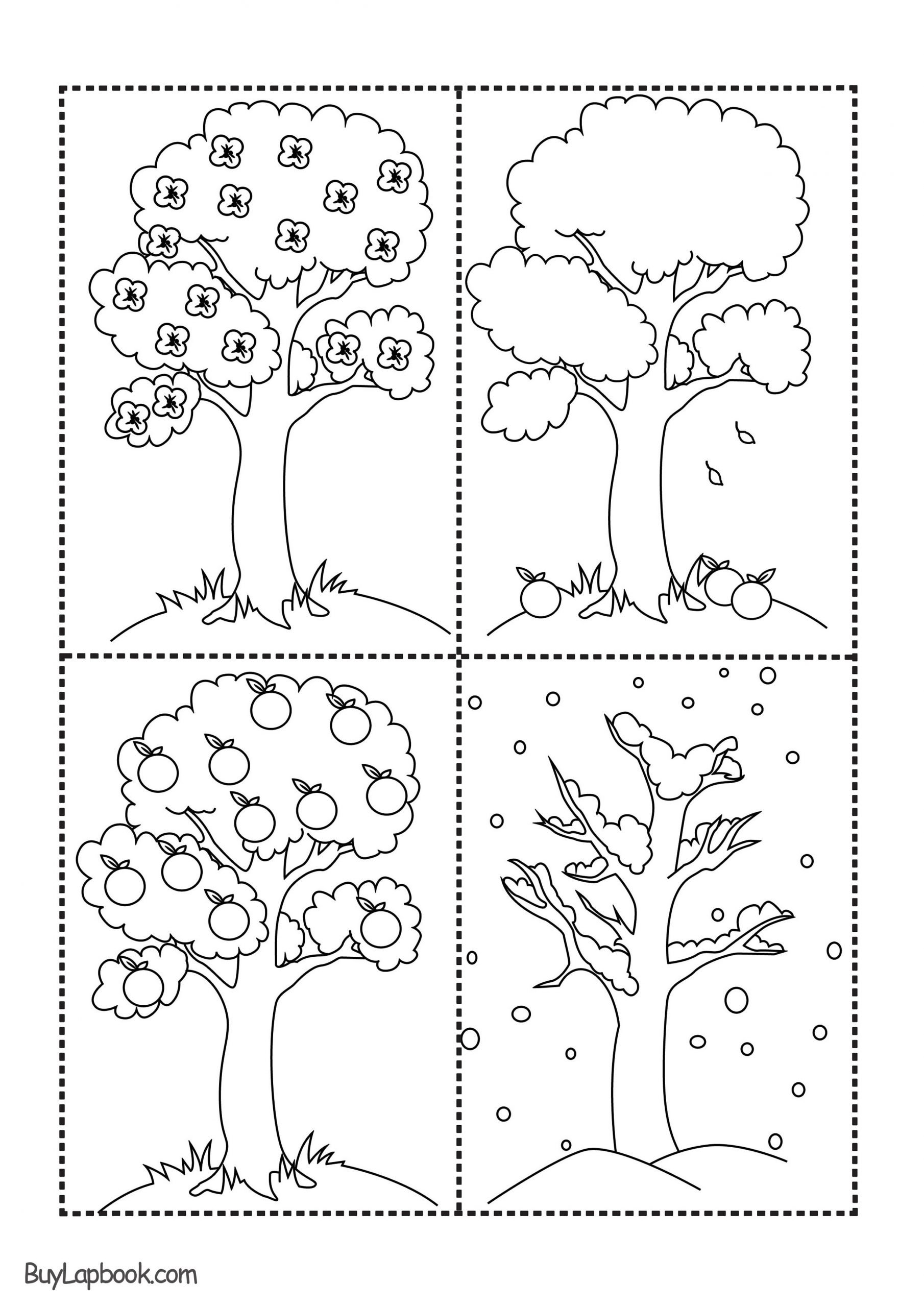 Seasons Worksheets for Kindergarten the Four Seasons Of the Apple Tree Printables – Buylapbook