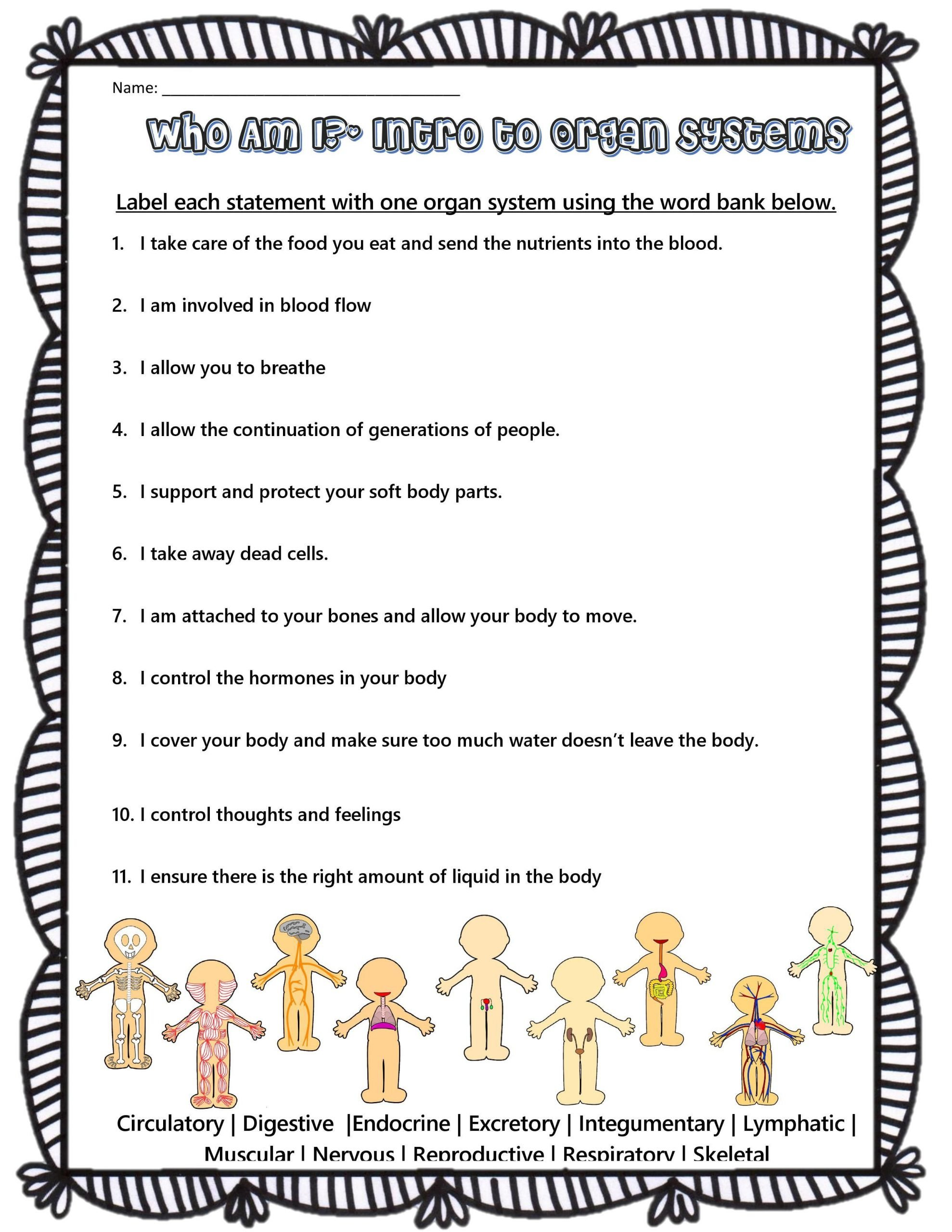 Who Am I Science Worksheet Human Body Systems Riddles