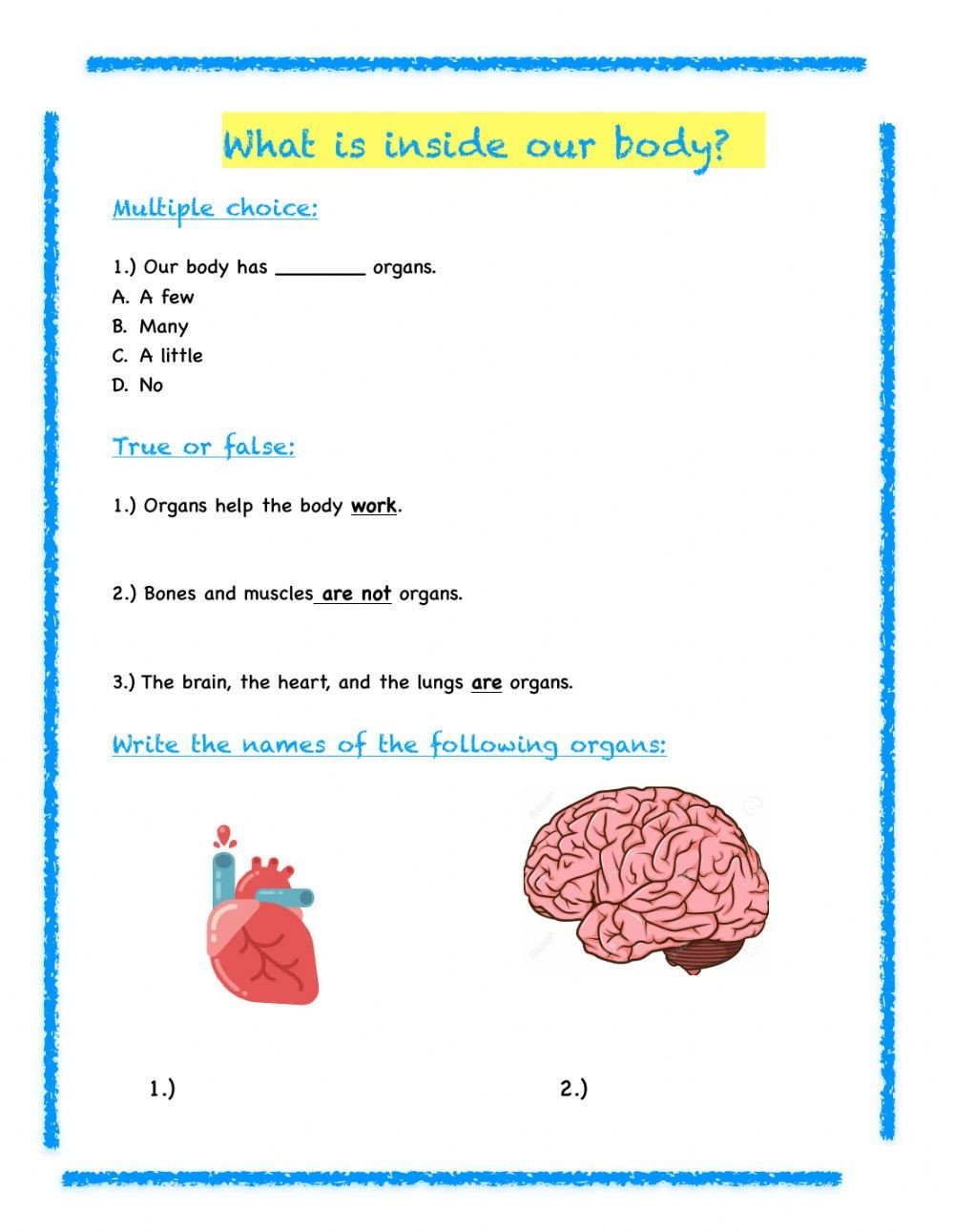 3rd Grade Human Body Worksheets 3rd Grade Science Review Interactive Worksheet