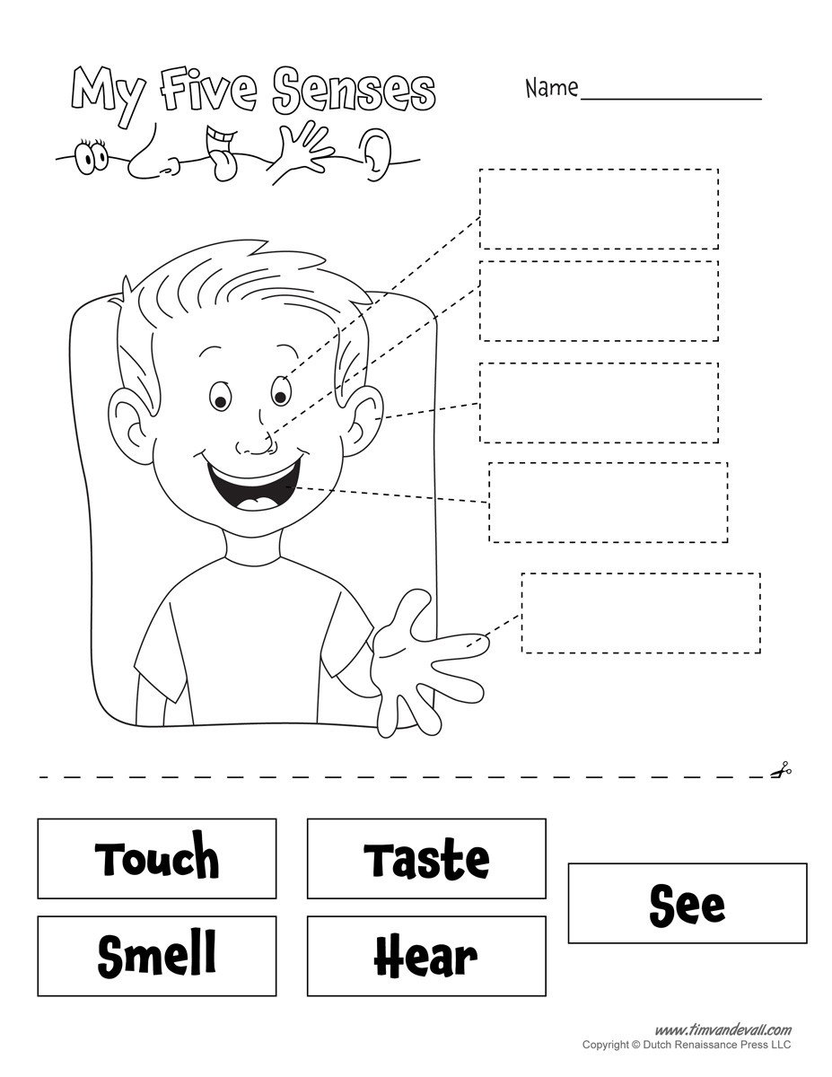 printables=five senses worksheet bw
