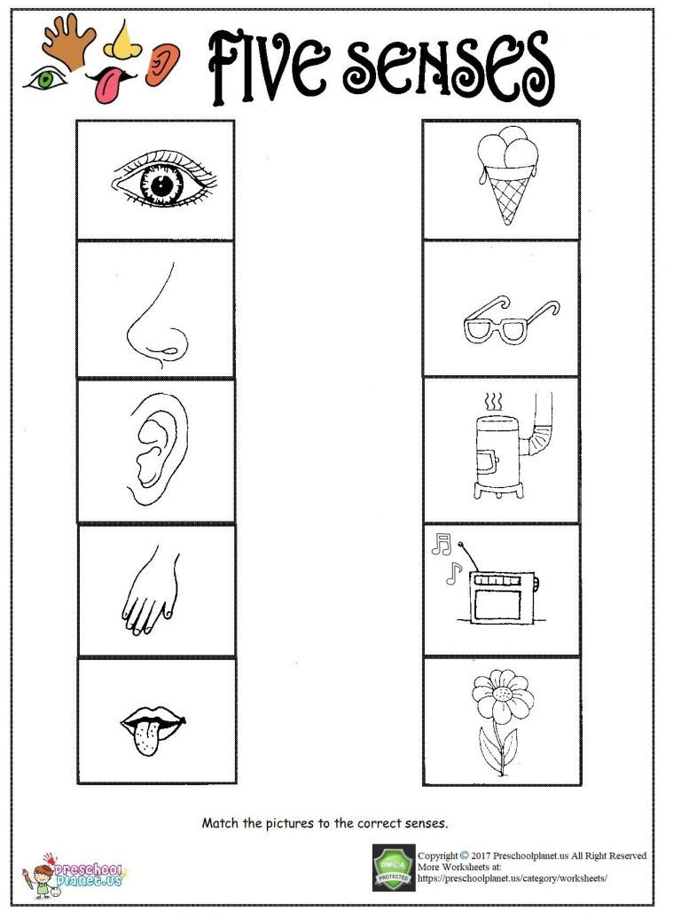 Printable five senses worksheet – Preschoolplanet