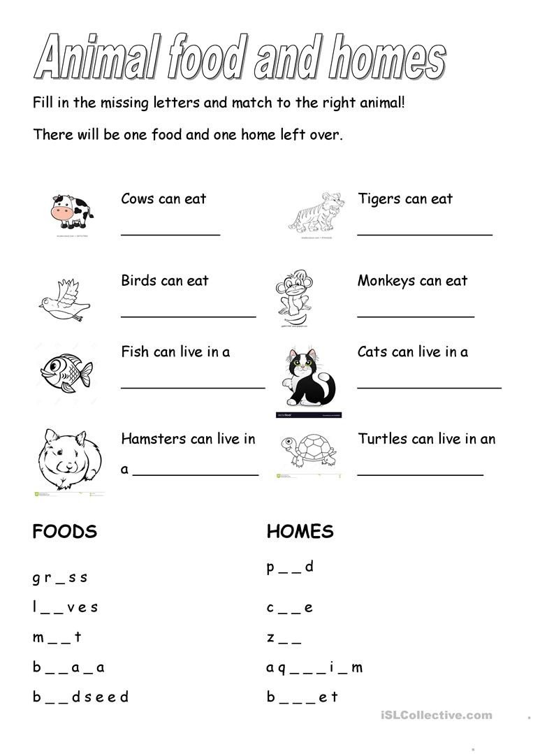 Animal Homes Worksheet Animal Foods and Homes English Esl Worksheets for Distance