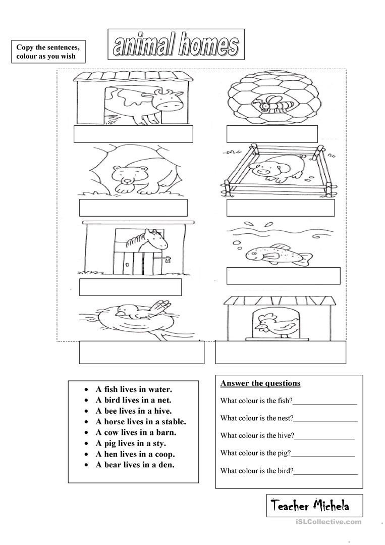 Animal Homes Worksheet Animal Homes English Esl Worksheets for Distance Learning
