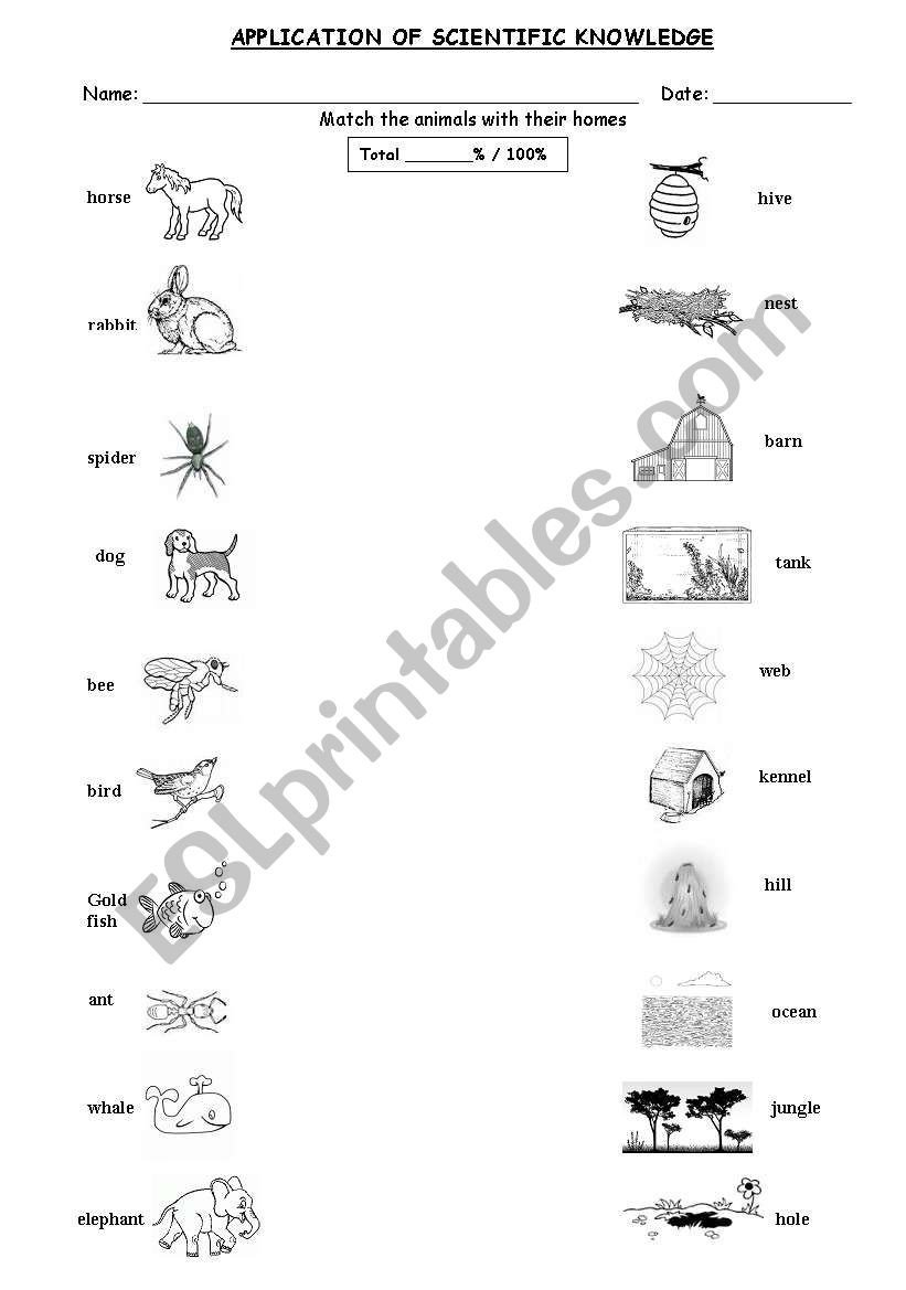 Animal Homes Worksheet Animal Homes Esl Worksheet by Cobbs