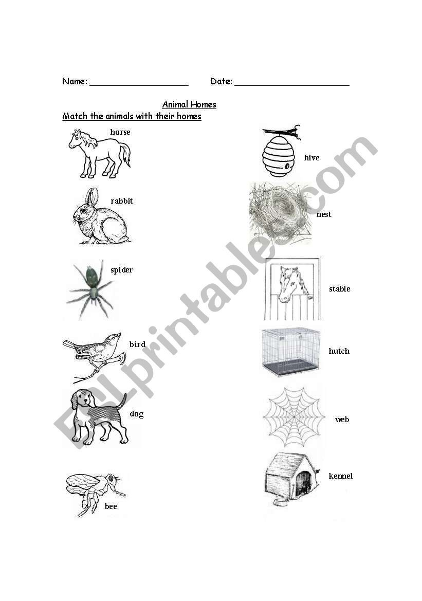 Animal Homes Worksheet English Worksheets Animal Homes