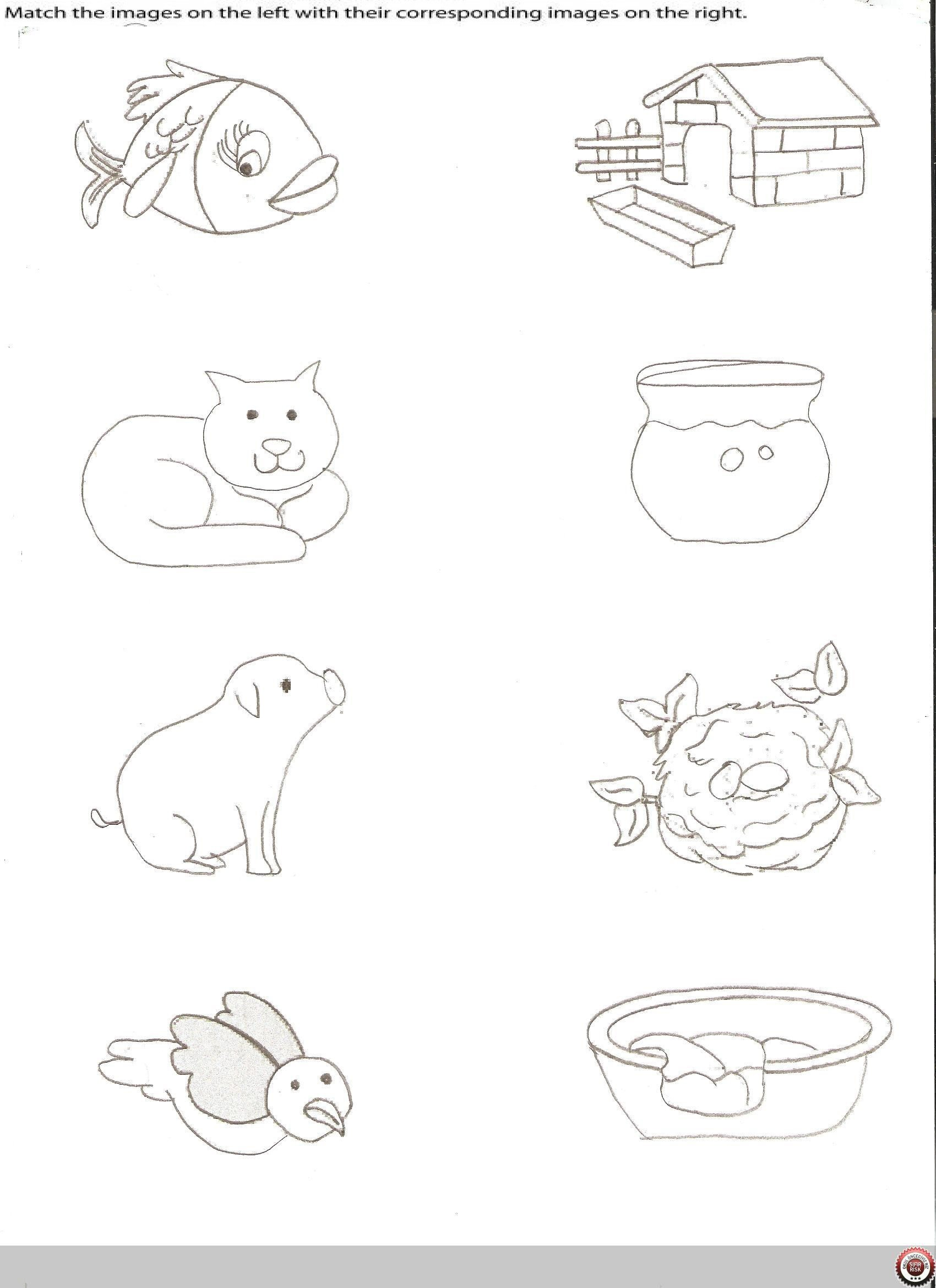 Animal Homes Worksheet Kindergarten Animal Worksheets