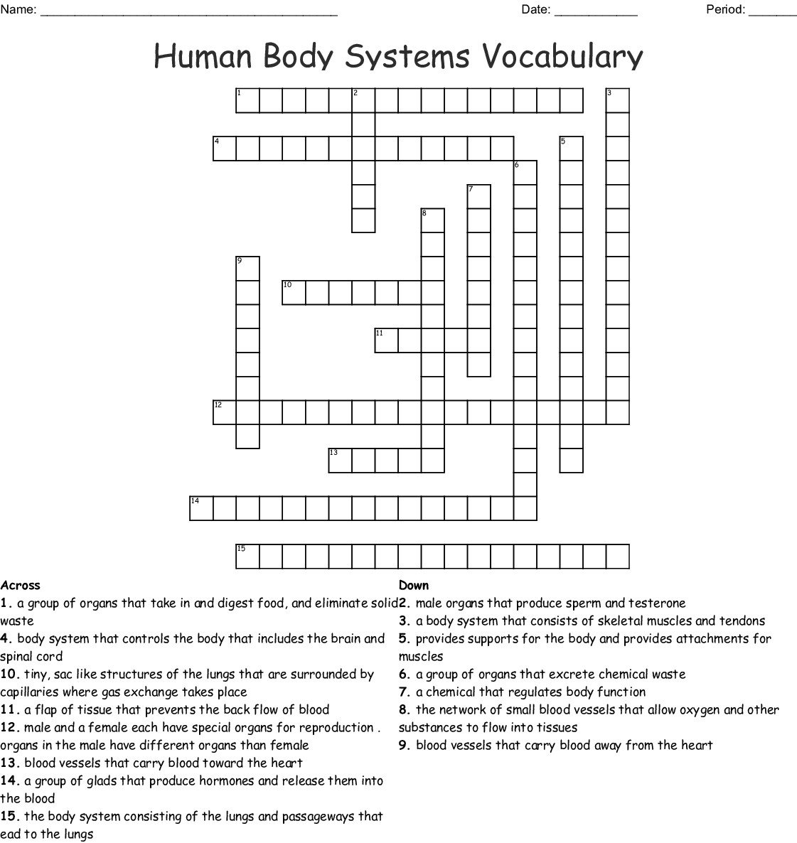 Body Systems Worksheet Answers Human Circulatory System Worksheet Answer Key