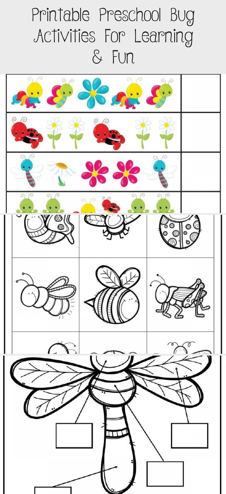 Bug Worksheets for Preschool Insect Unit Study