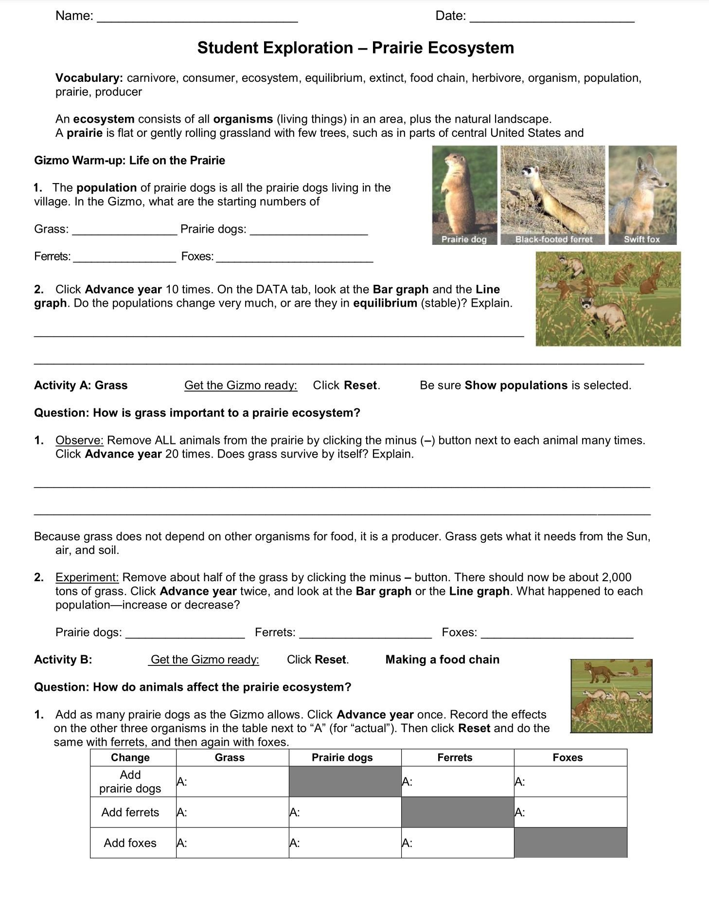 Ecosystem Worksheets 4th Grade Ecosystem Student Exploration Worksheet Go to Explore