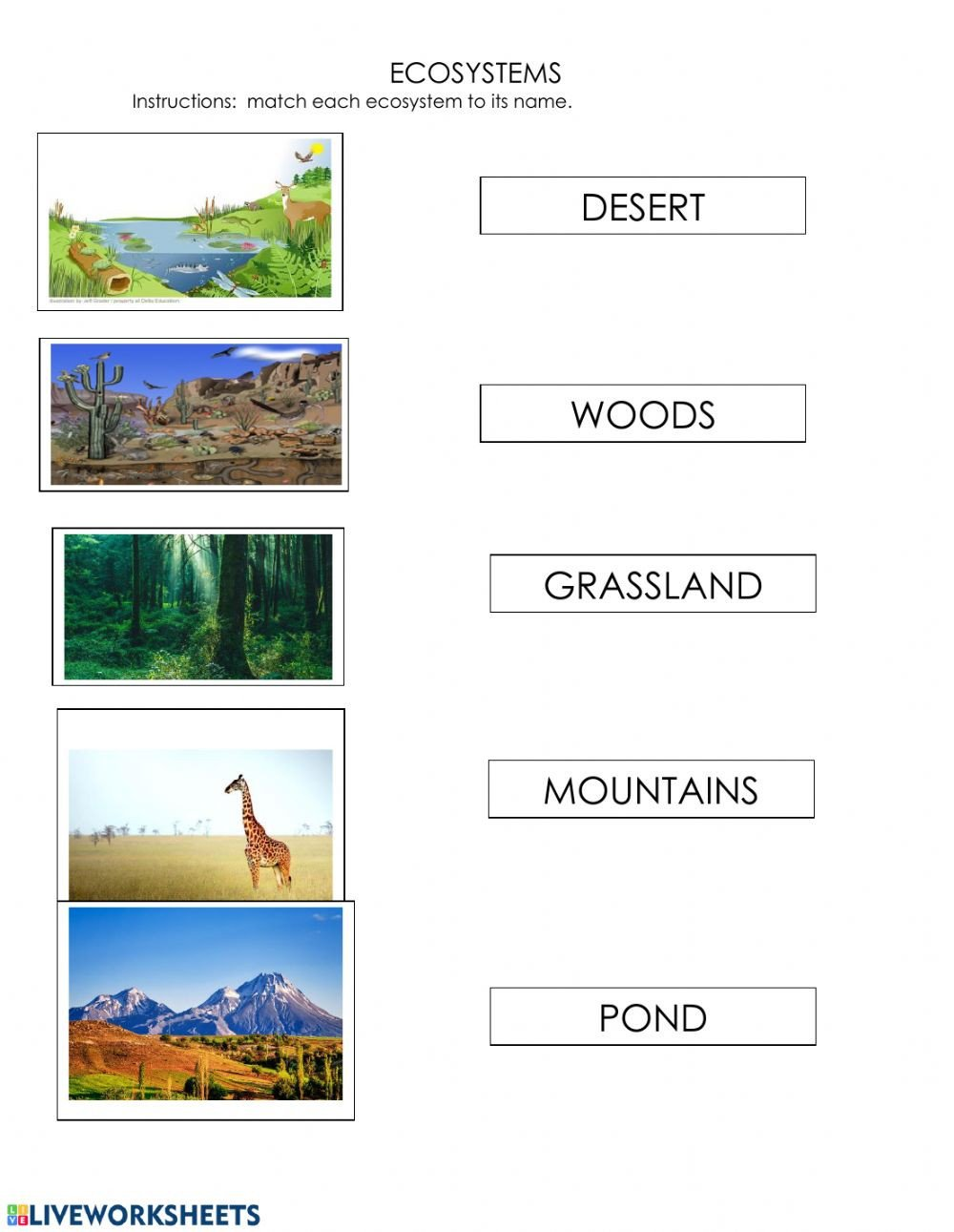 Ecosystems Interactive worksheet