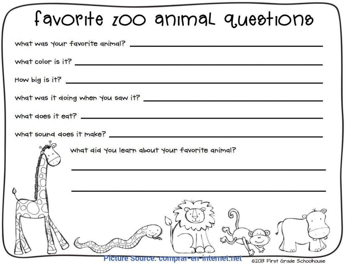 excellent zoo lesson plans 3rd grade zoo field trip worksheet free worksheets library an