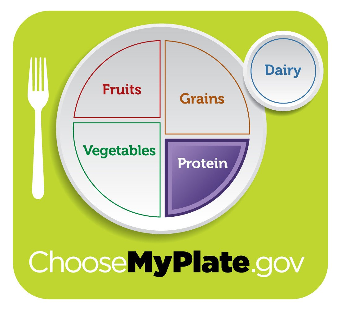 Five Food Groups Worksheets Myplate Graphic Resources